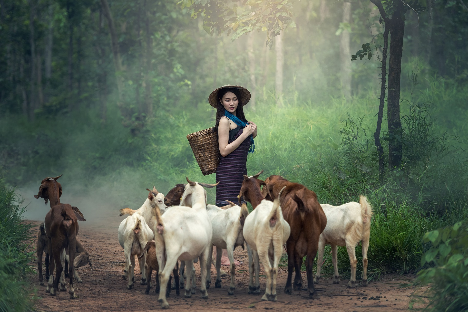 Girl with the goats photo