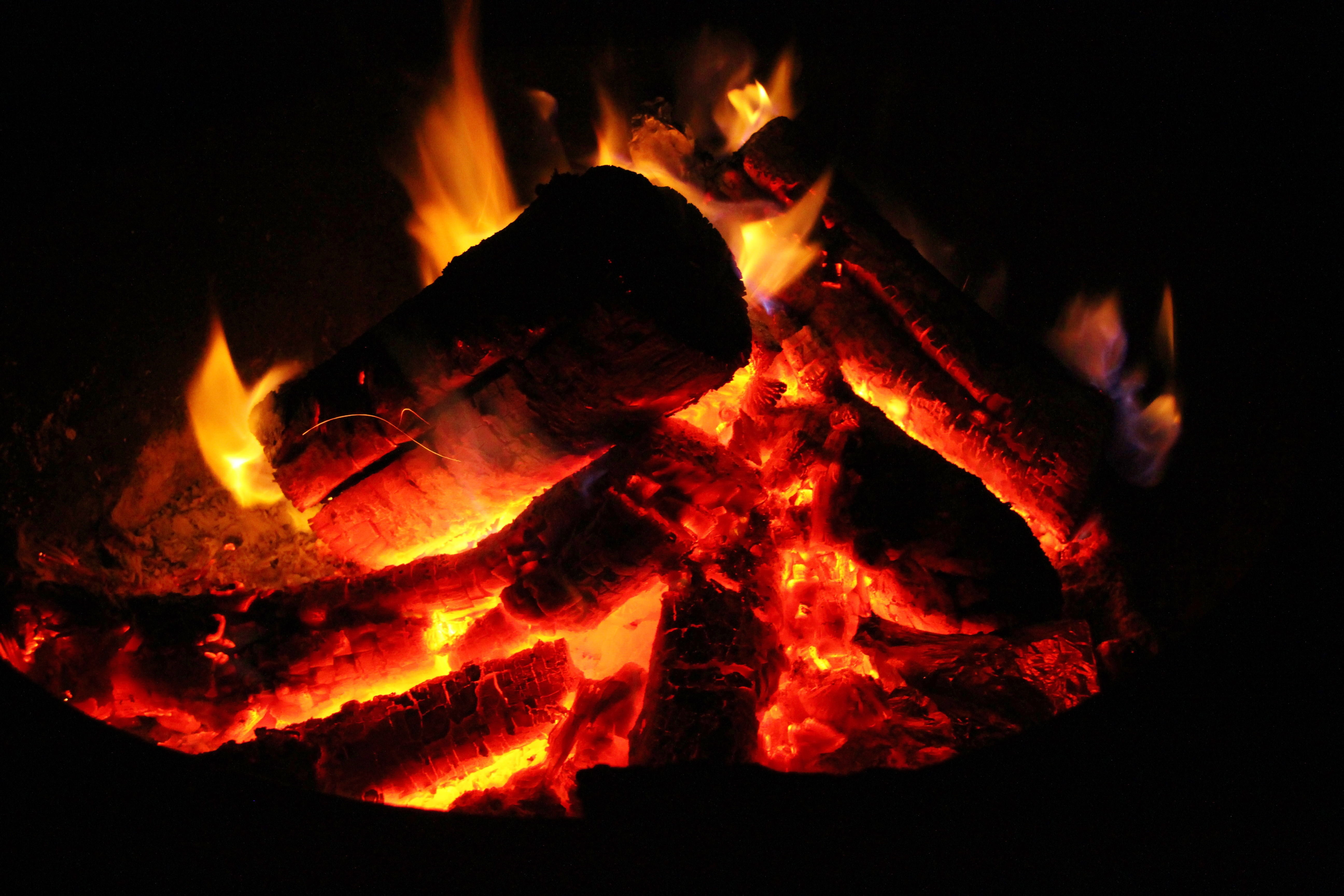 Free Images : outdoor, wood, warm, summer, orange, red, flame, fire ...