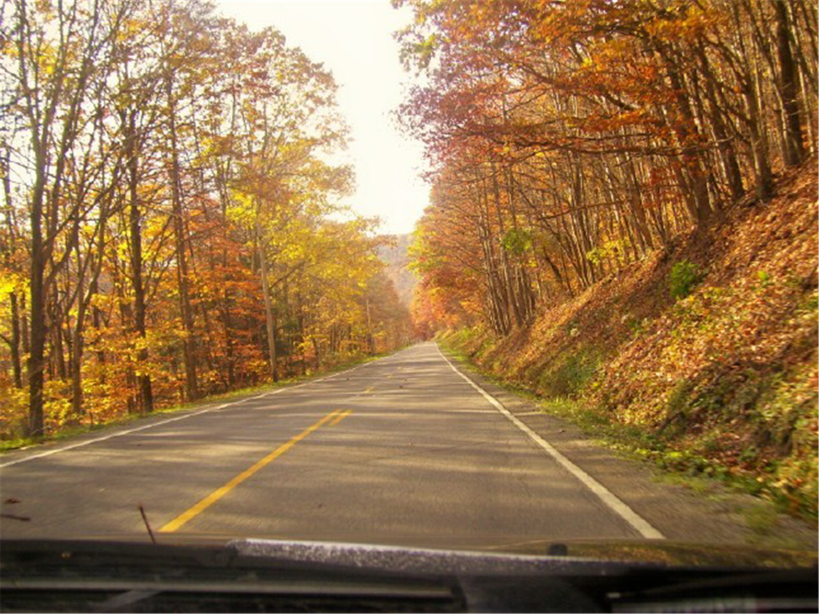 God bless two lane roads and fall foilag photo