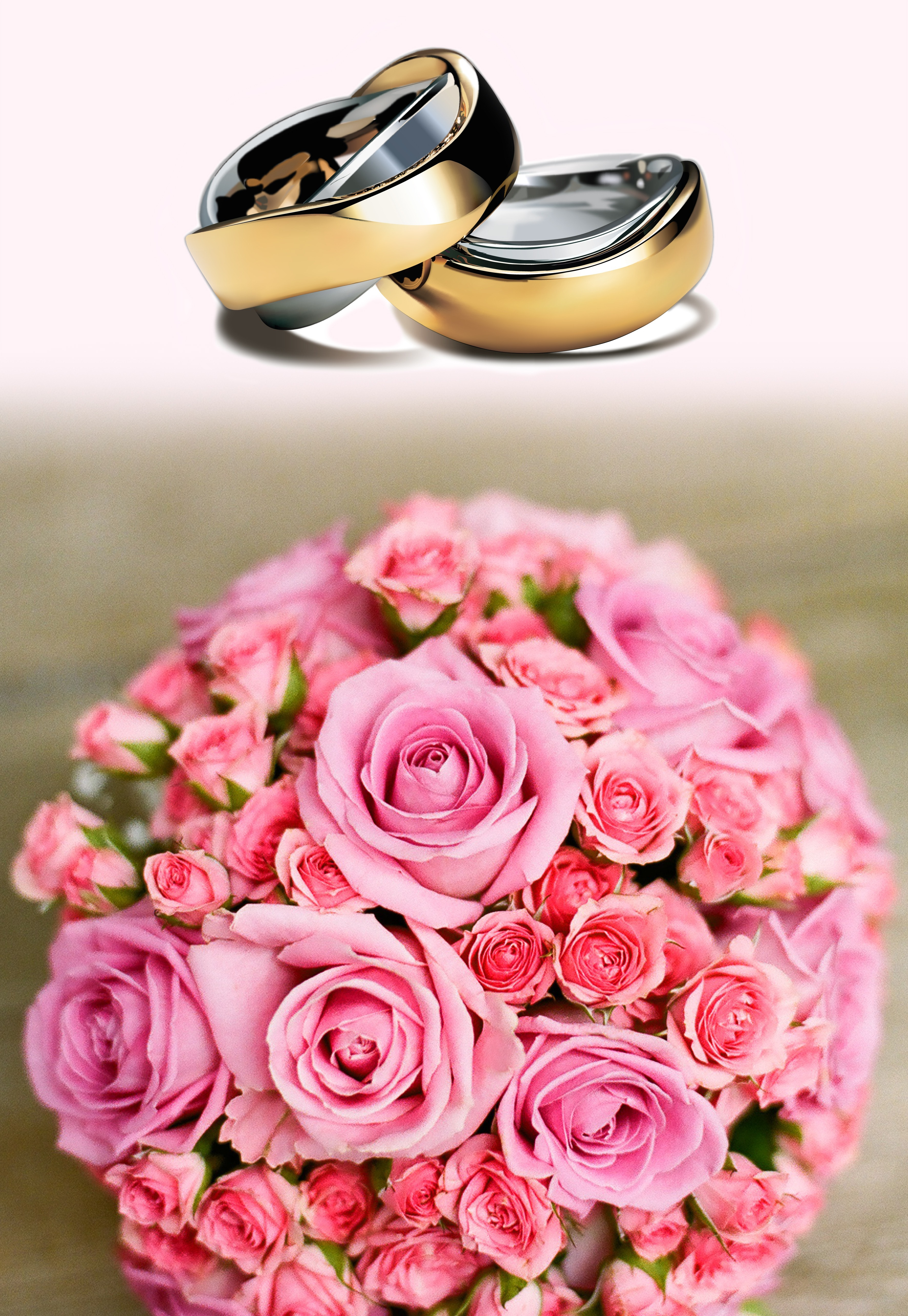 Gold and Silver Band Ring, Bouquet, Roses, Wedding, Wedding rings, HQ Photo