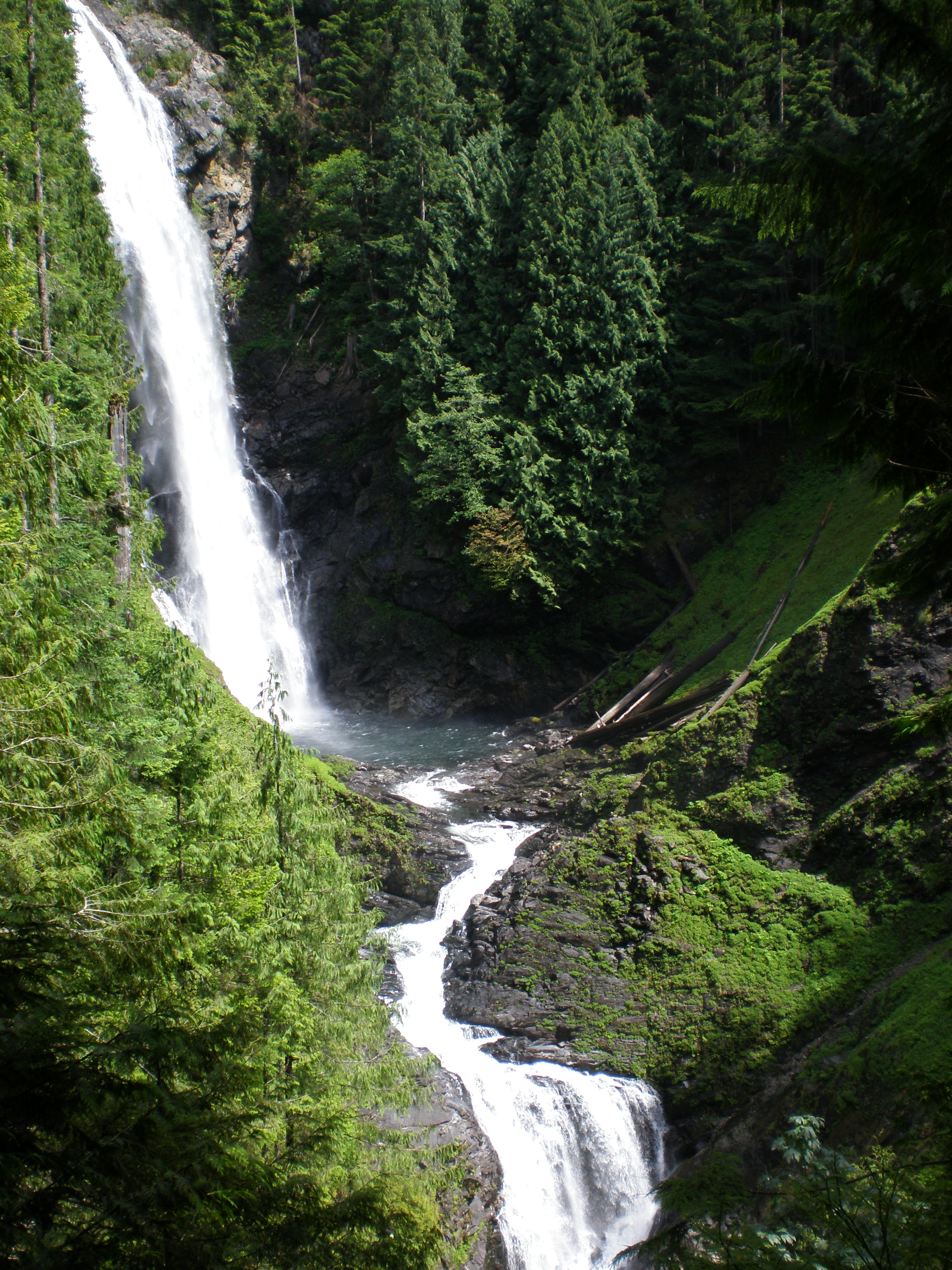 Gold decadence falls photo