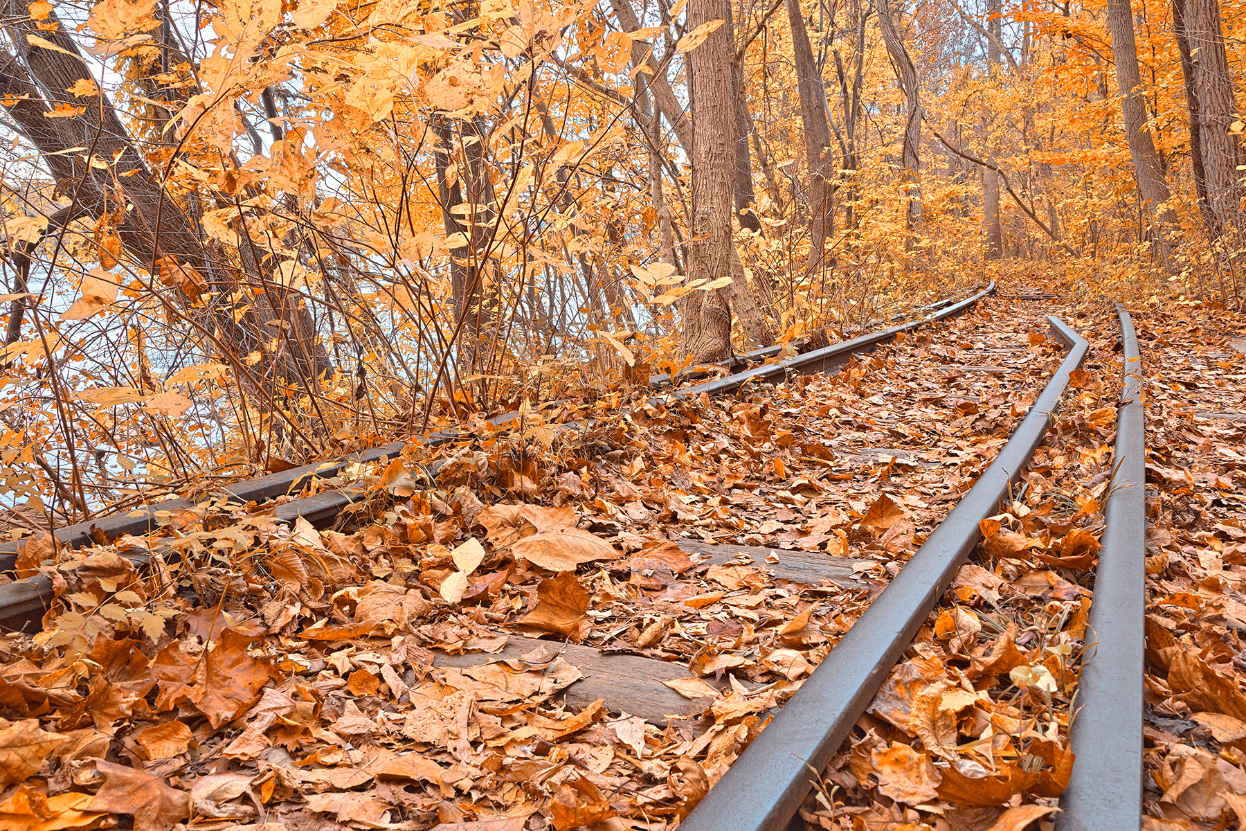 Gold Ember Railroad - HDR, Rail, Serene, Scenic, Scenery, HQ Photo