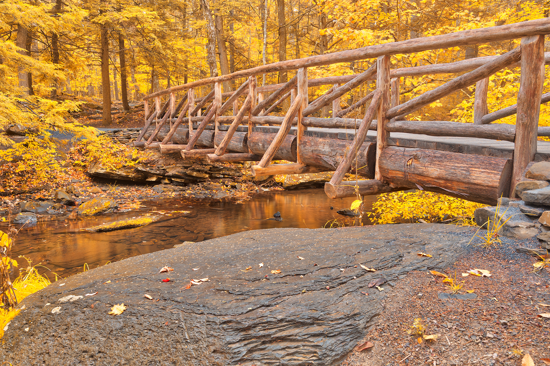 Golden Autumn Log Bridge - HDR, Adventure, Rails, Serene, Scenic, HQ Photo