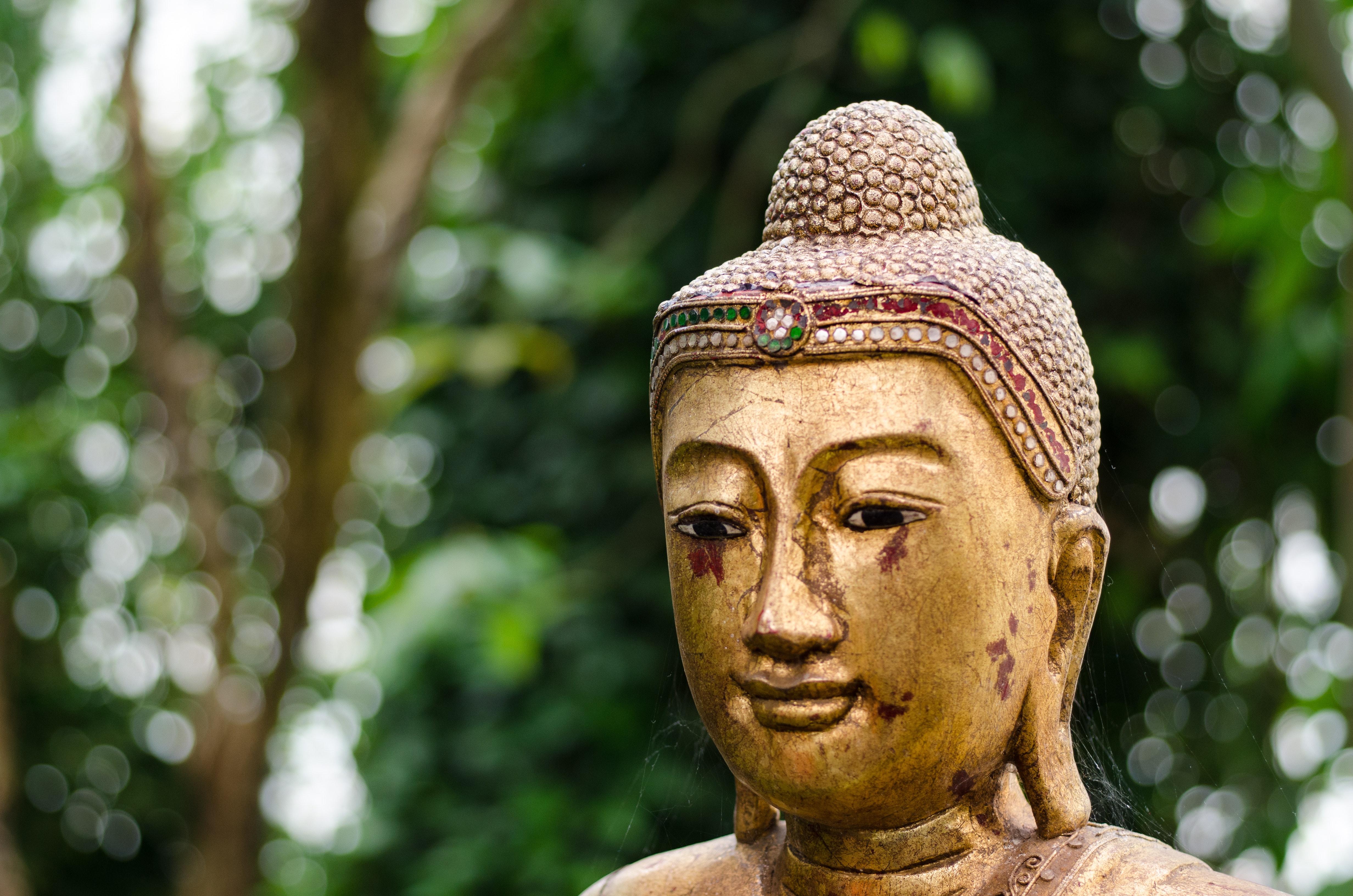 Golden buddha statue photo