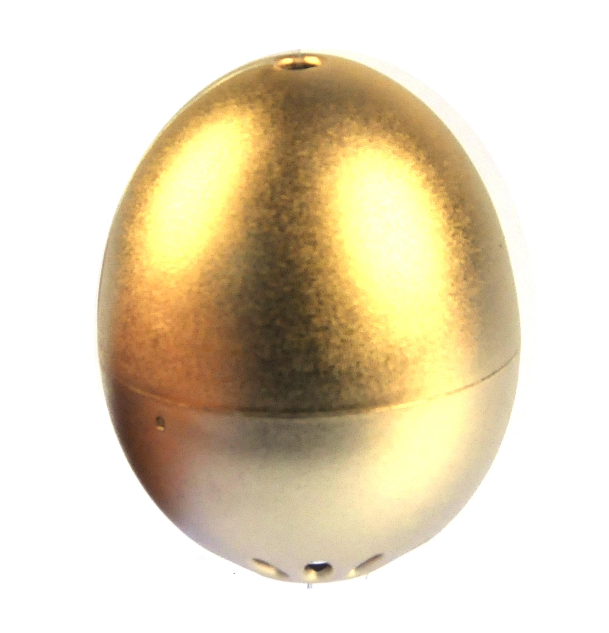 Golden egg photo