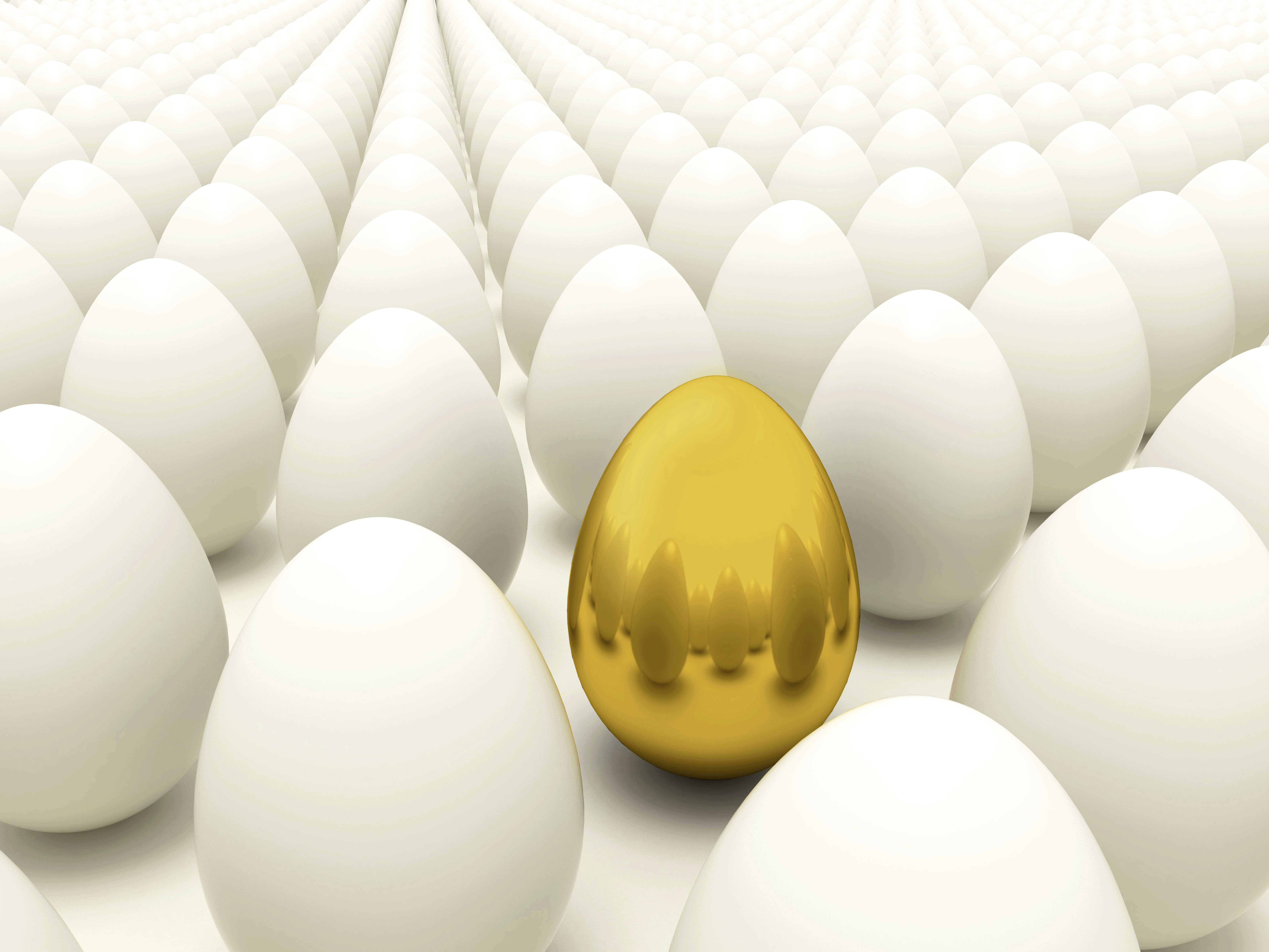Creating The Golden Egg: Tips on Innovating Successful New Products ...