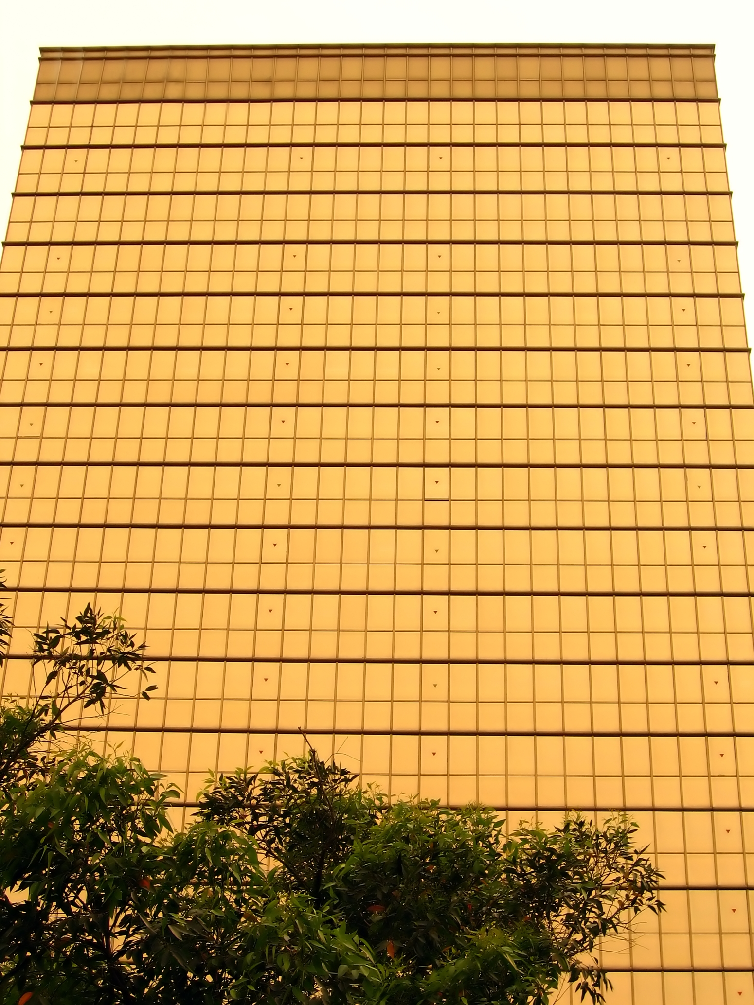 Golden Facade, Point, Riches, Perspective, Modern, HQ Photo