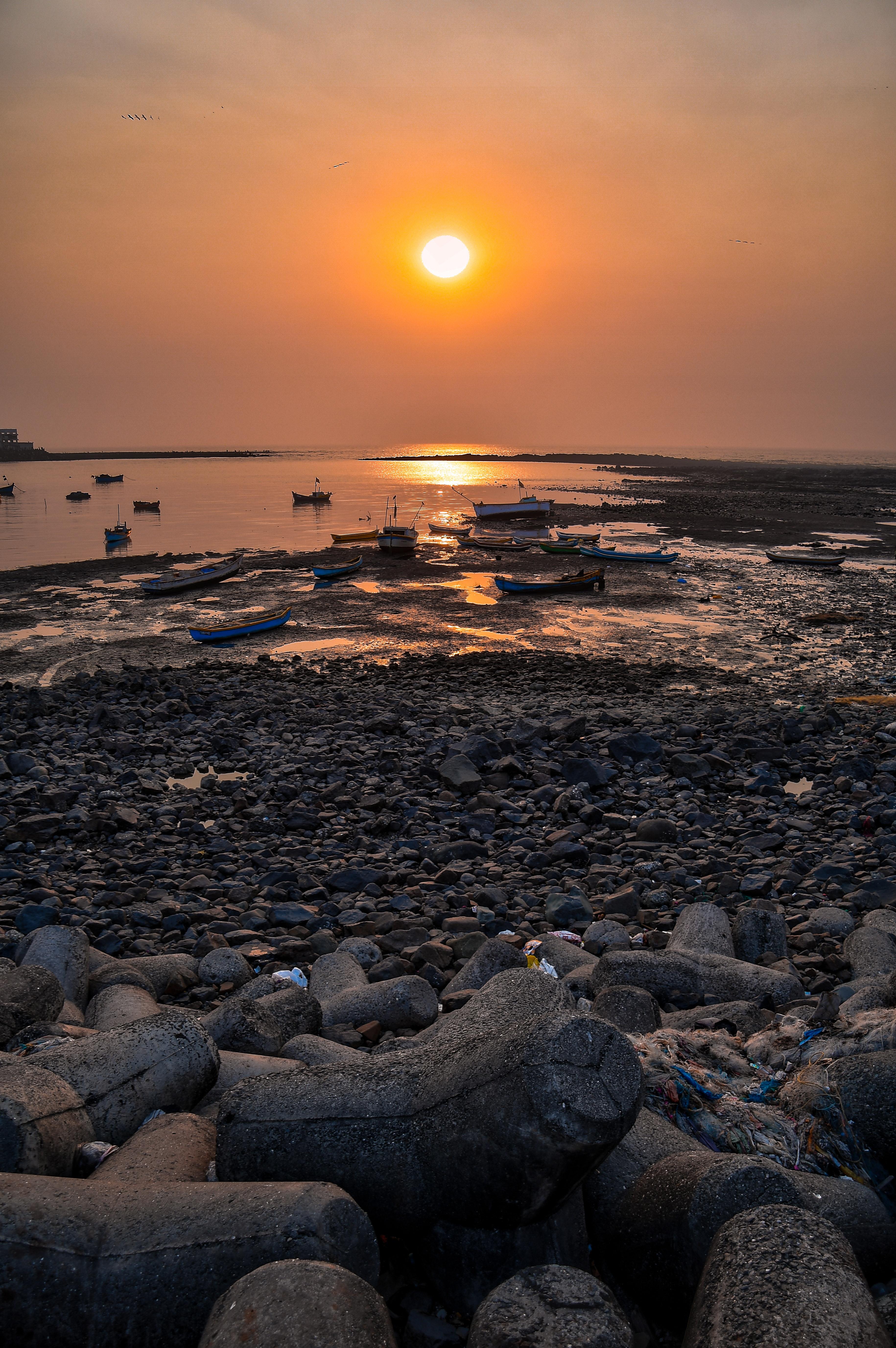 Golden hour photo of seashore