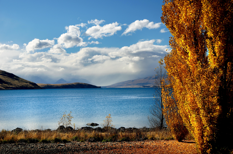 Golden Season (7), Autumn, Scenery, Water, Trees, HQ Photo