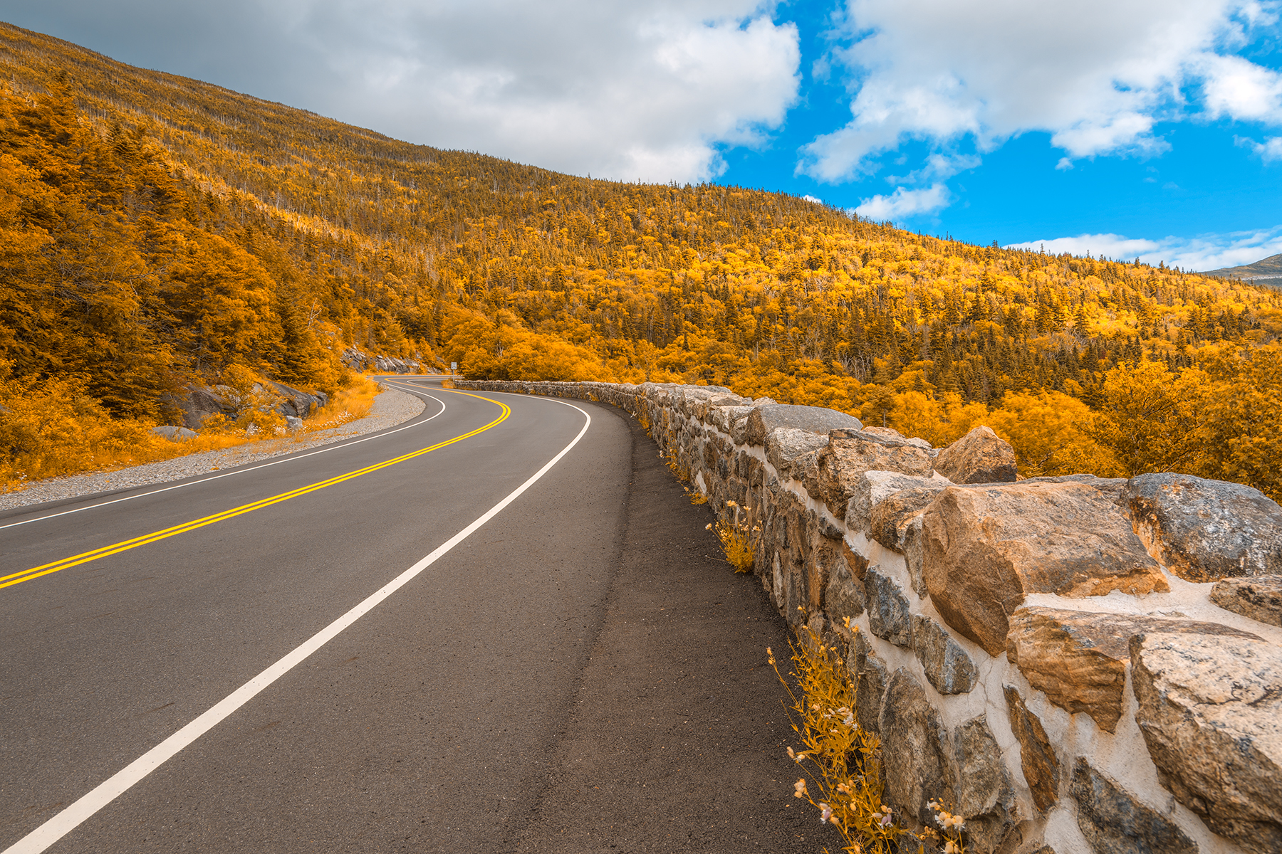 Goldface mountain road - hdr photo