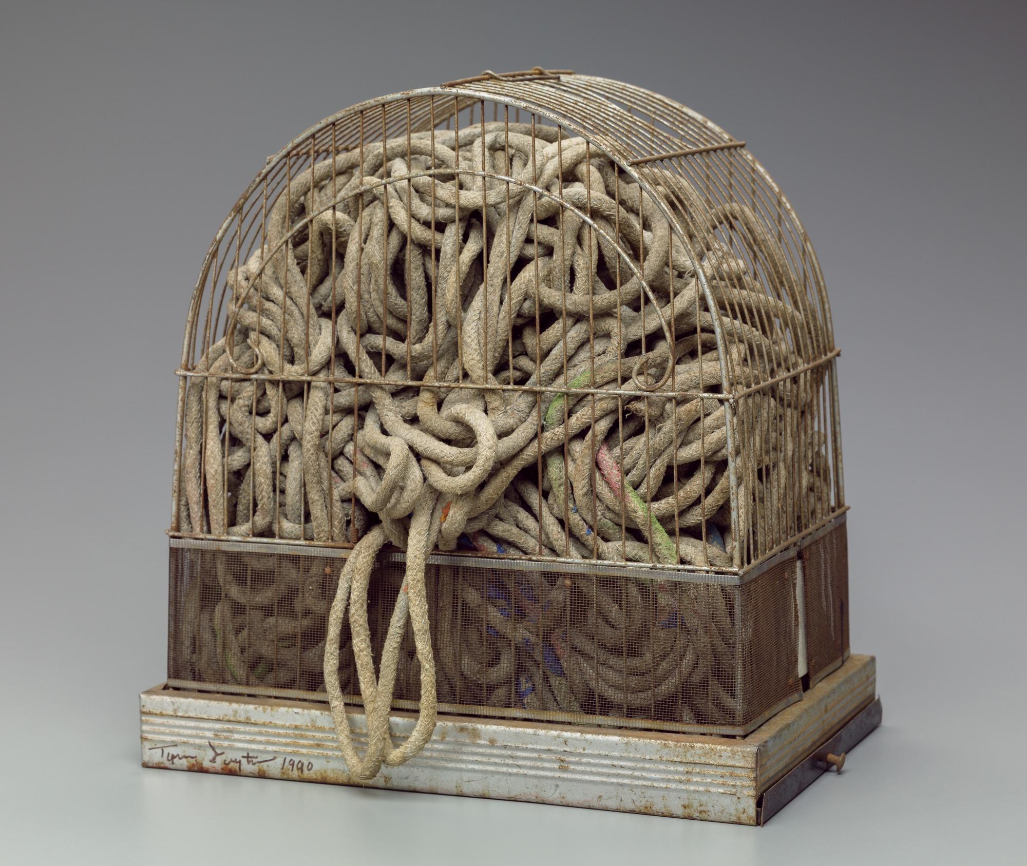 Caged Brain | Detroit Institute of Arts Museum