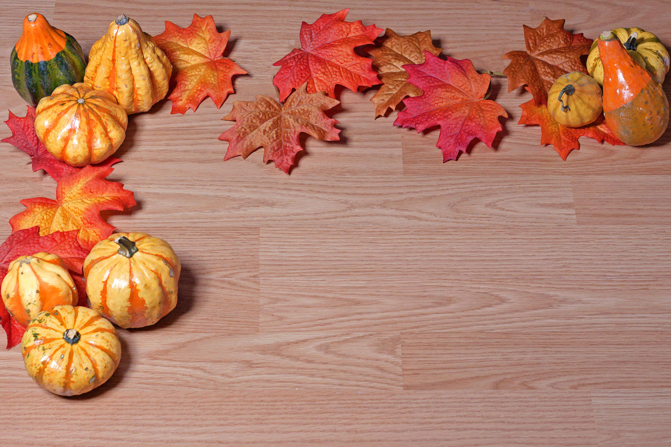 Gourds and Leaves, Space, October, Orange, Red, HQ Photo