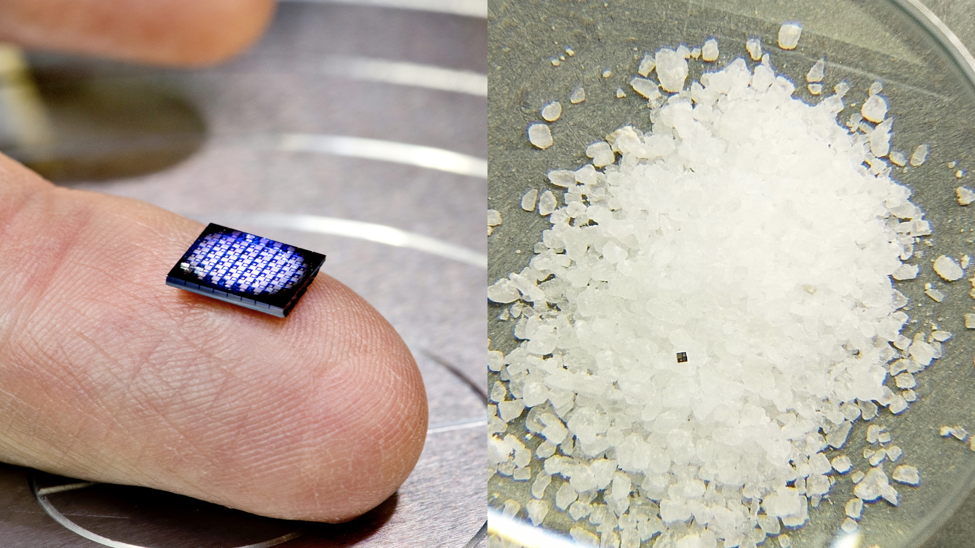 Why IBM Built a Computer That's the Size of a Grain of Salt | Fortune