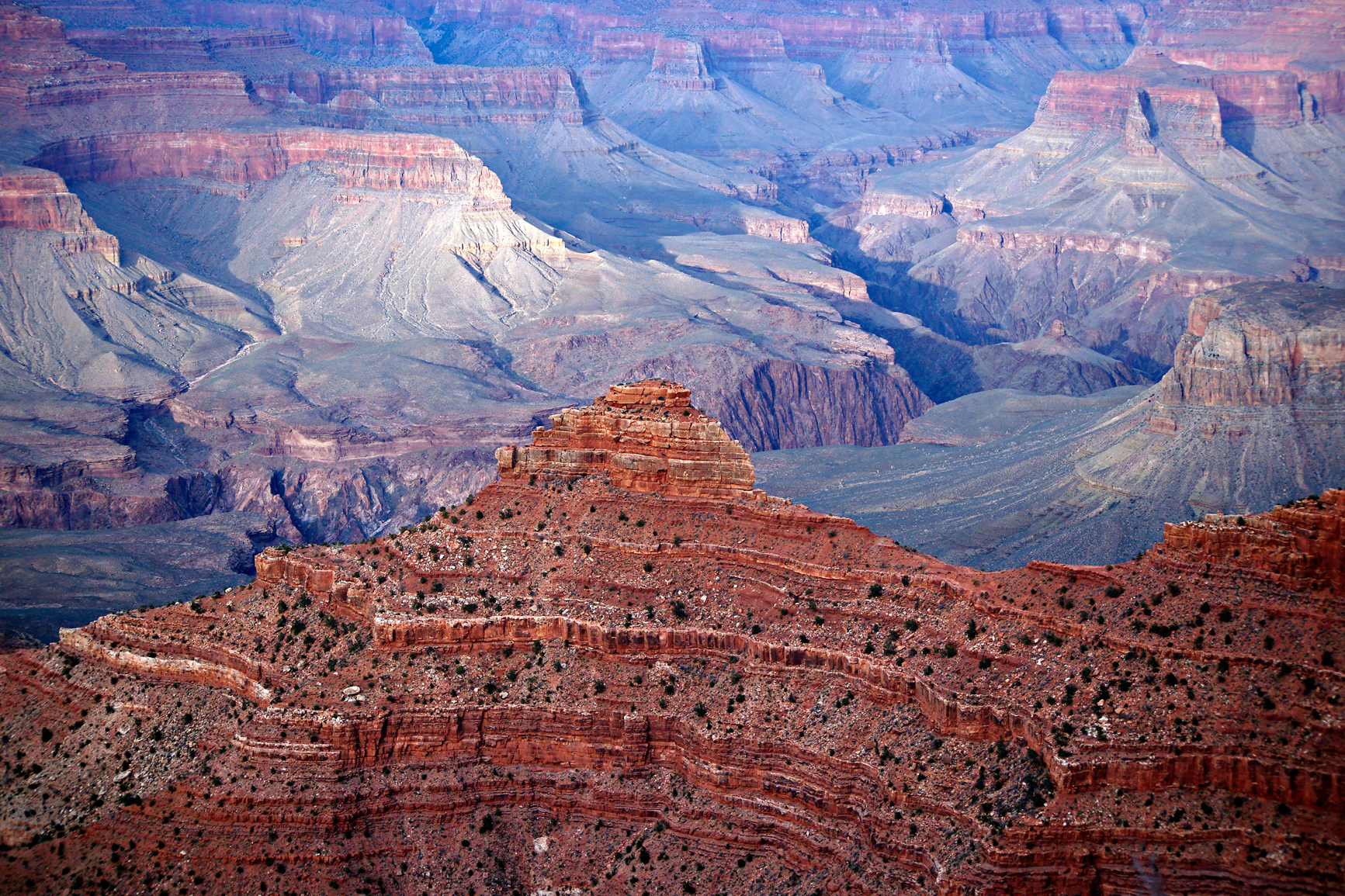 Grand canyon evening ridge photo