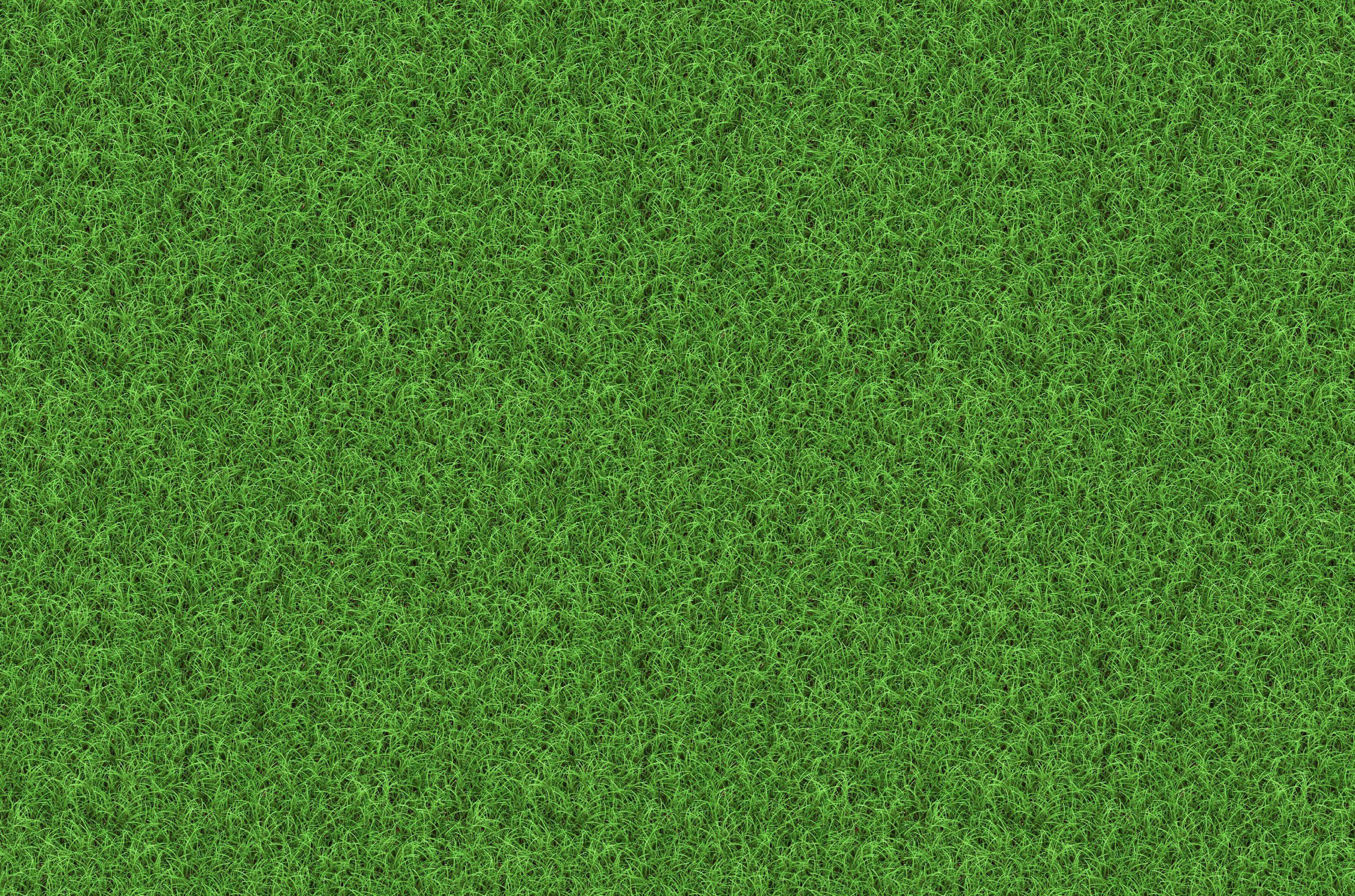 Gallery For > Grass Texture Wallpapers