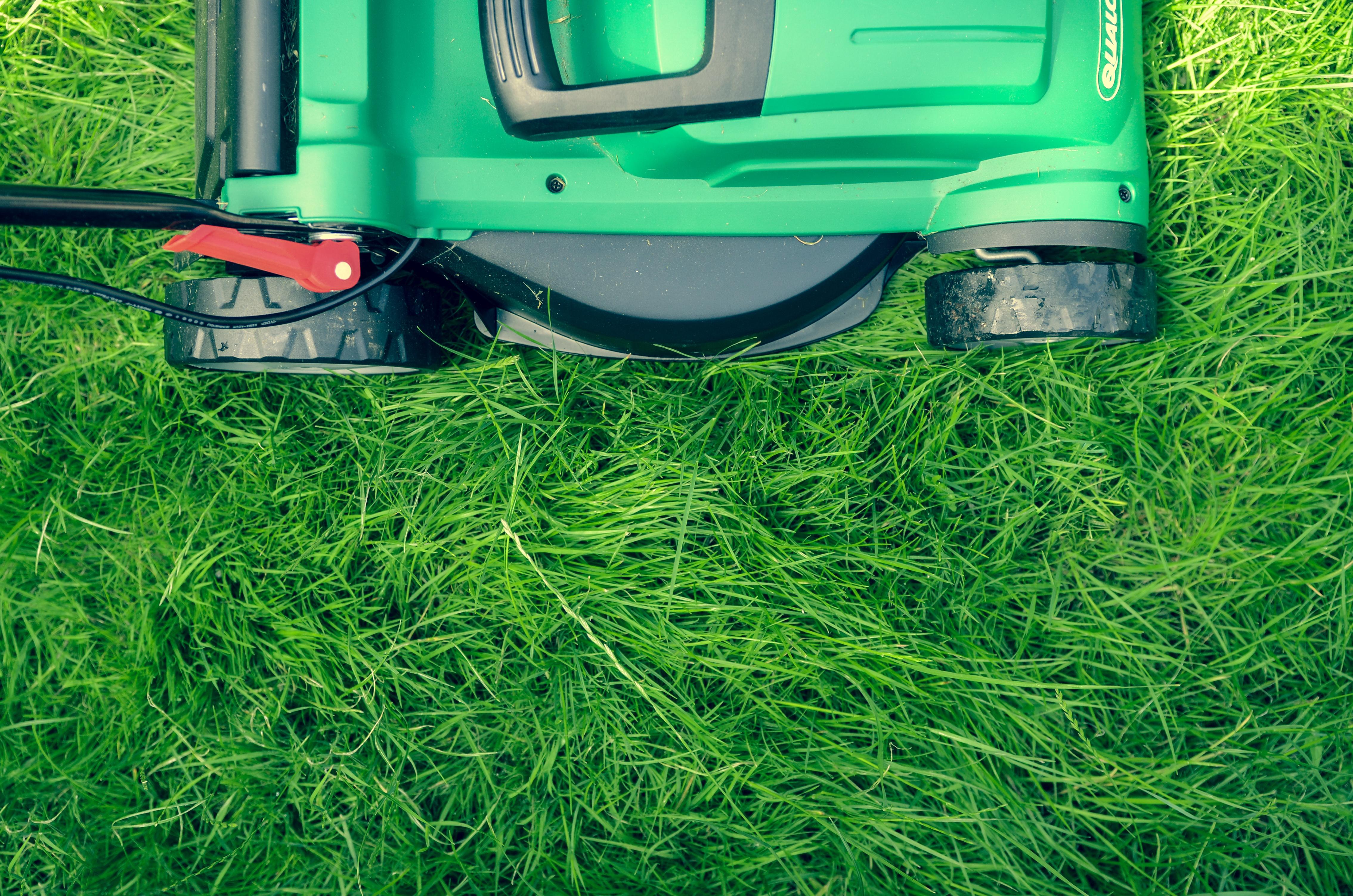 Grass Cutting Machine, Cut, Cutter, Cutting, Grass, HQ Photo