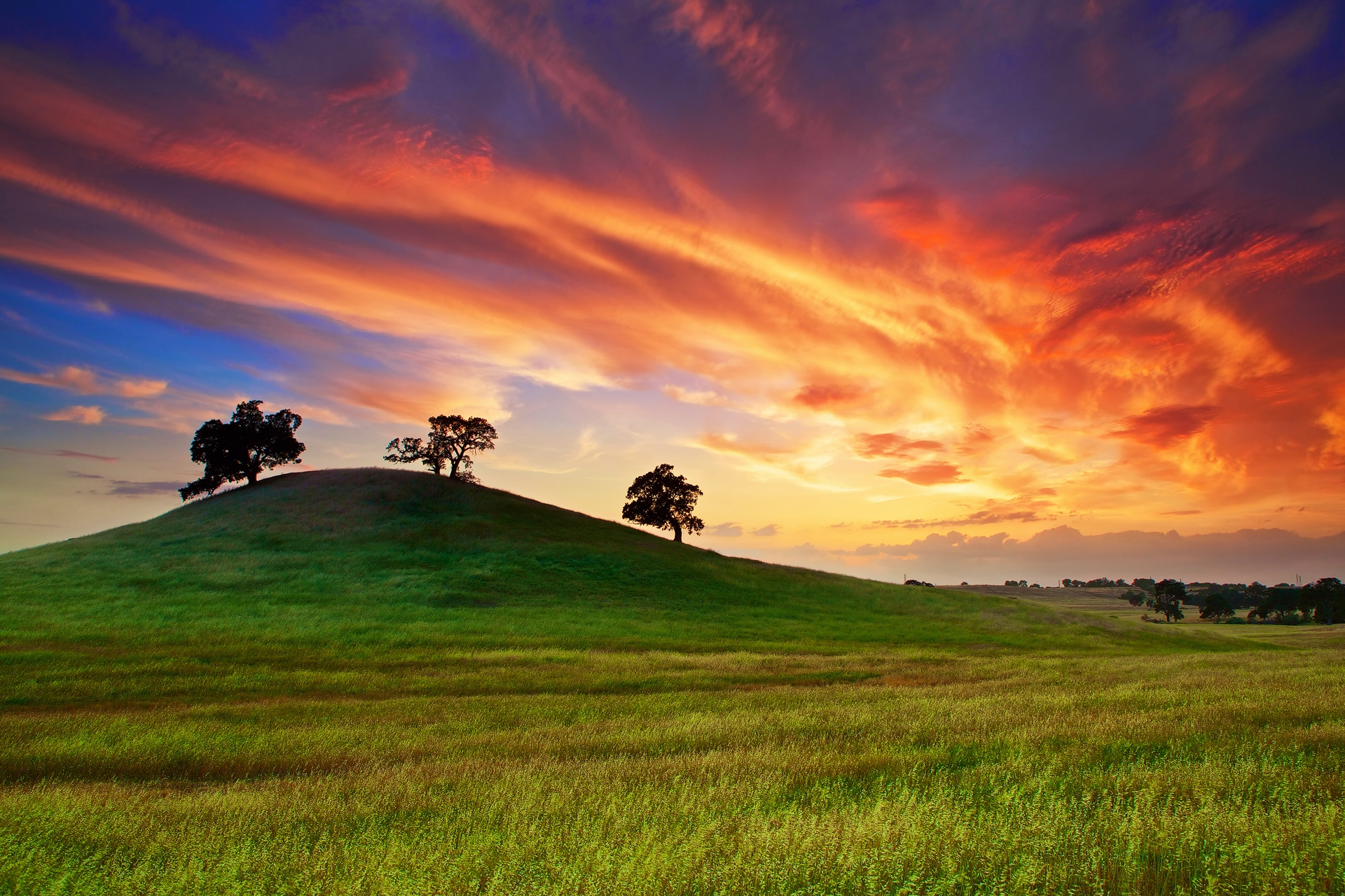 Wallpaper : sunlight, trees, landscape, sunset, hill, nature, grass ...