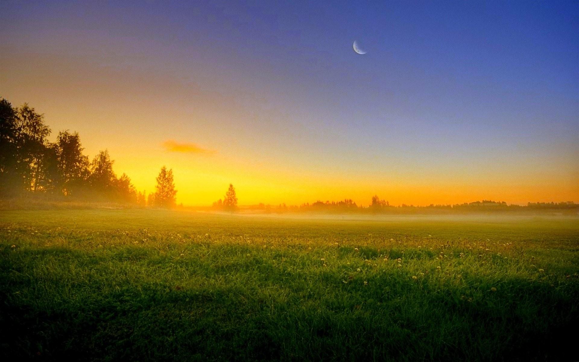 Sunrise Sunset: Grass Sunset Sky Night Landscape Nature Moon Field ...