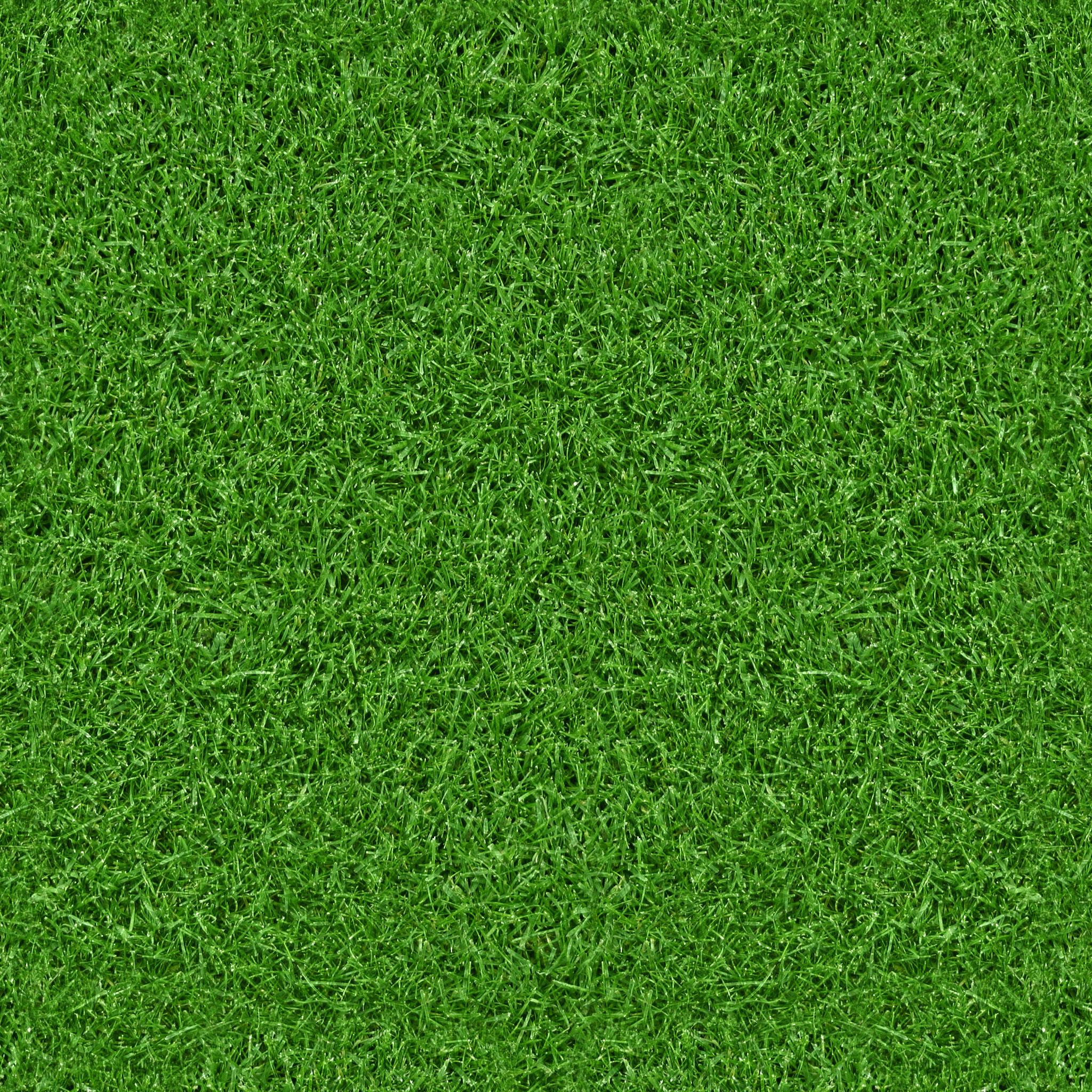 Green Grass Texture-Free Textures | All Design Creative