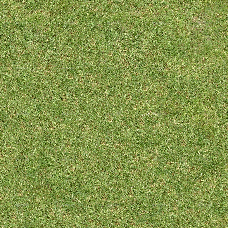 Grass Textures 029 by Quartor | 3DOcean