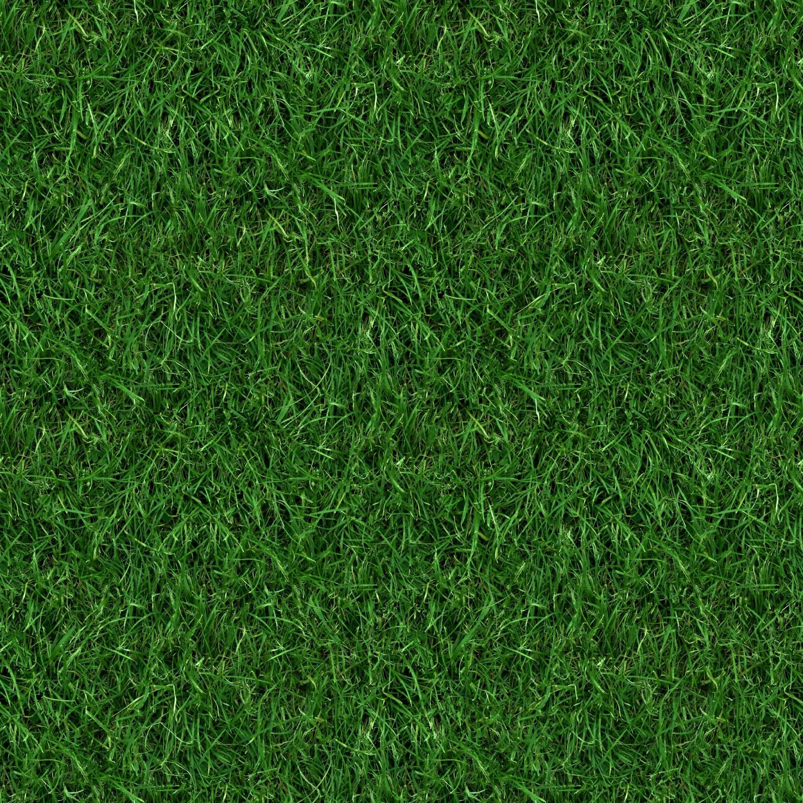 High Resolution Seamless Textures: (GRASS 4) seamless turf lawn ...