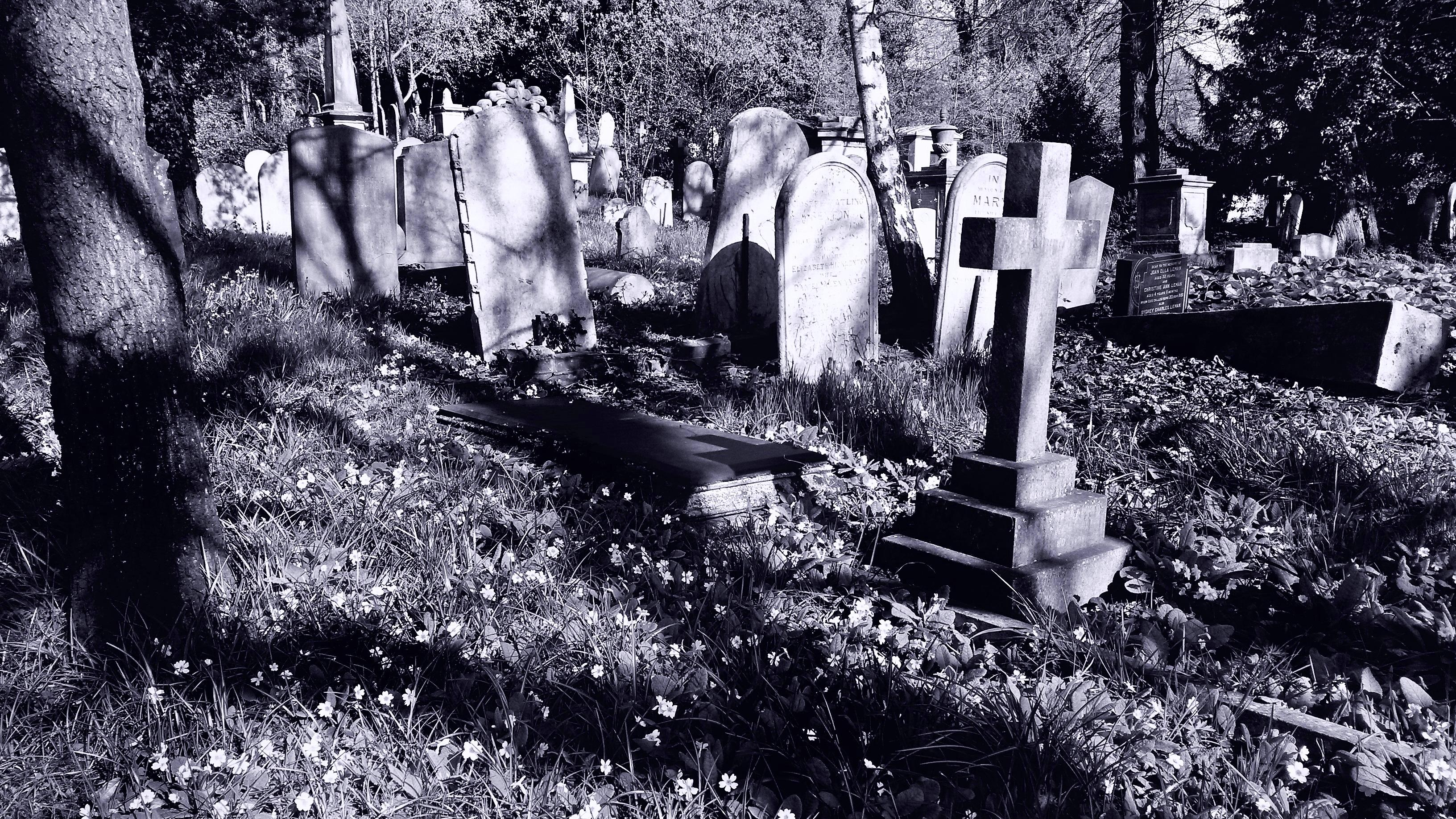 Grave & Memorial Stones~Cemetery, 2016, Black, Burial, B&w, HQ Photo