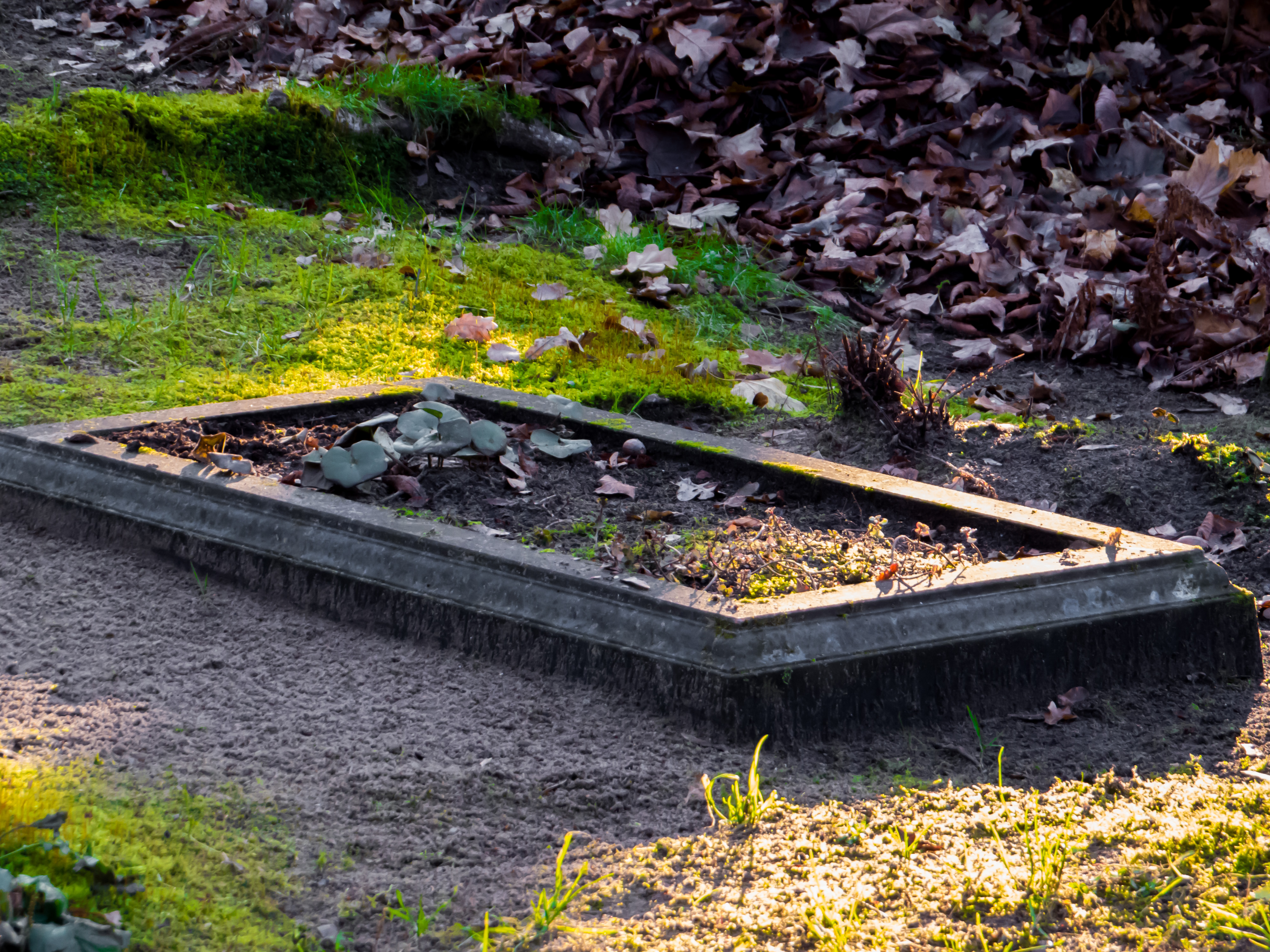 Grave photo