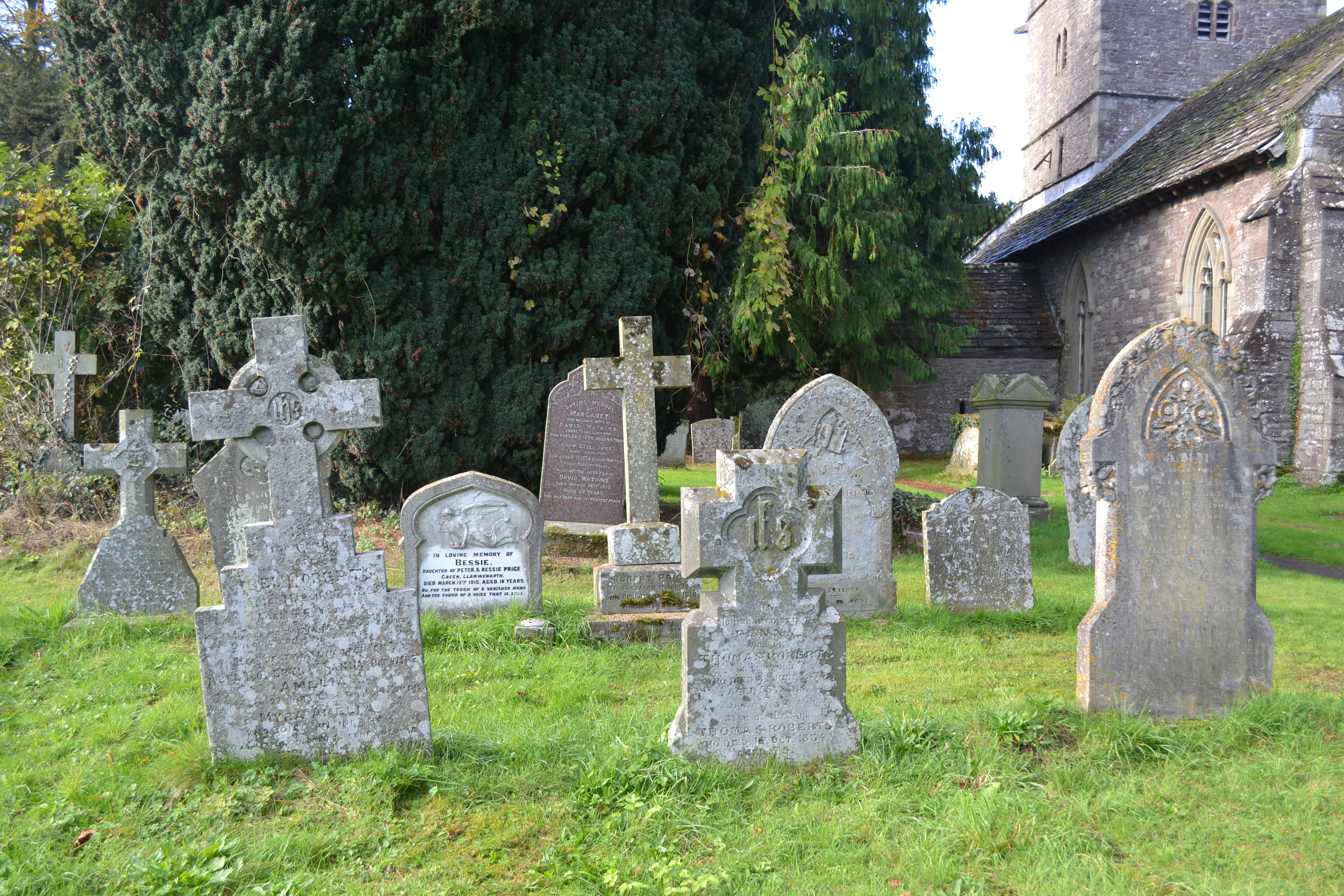Introduction to Graveyard Investigation-Free 1-Day Courses | The ...