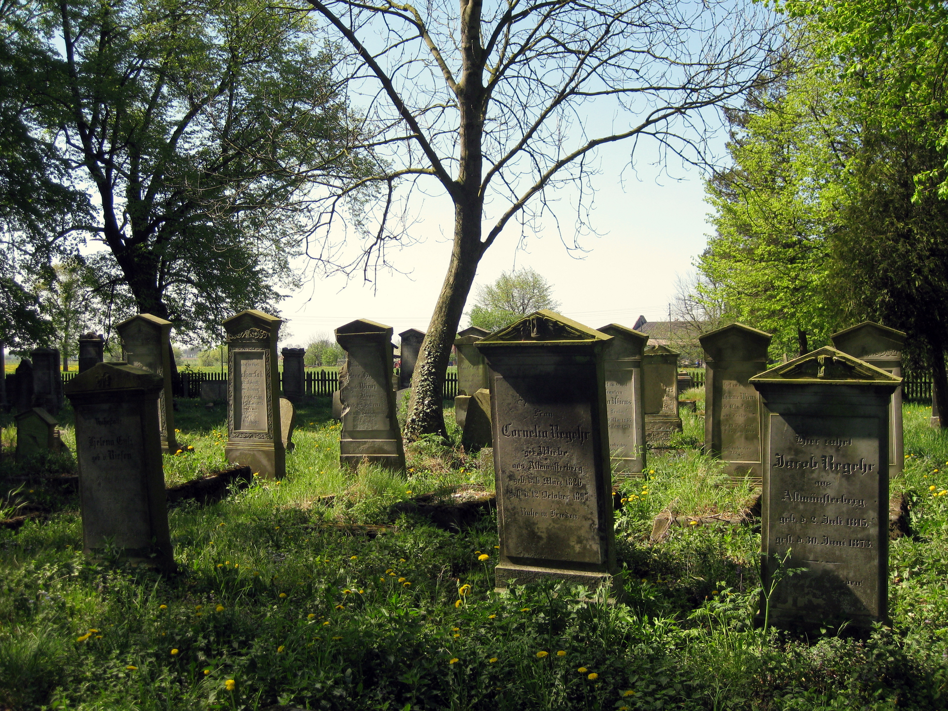 File:Mennonite Graveyard Heubuden 3.JPG - Wikimedia Commons