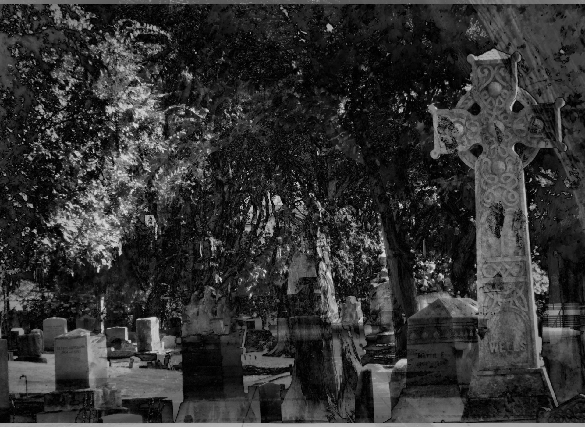 Haunted Graveyard Free Stock Photo - Public Domain Pictures