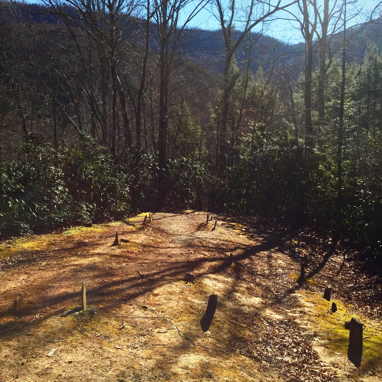 Smoky Mountain Graveyard | Life in Every Limb