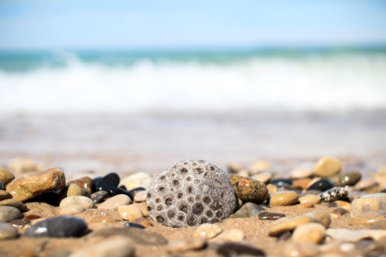 Gray and brown pebbles near sea photo
