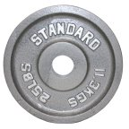 USA Sports by Troy Barbell Gray Olympic Weight Plate - Walmart.com