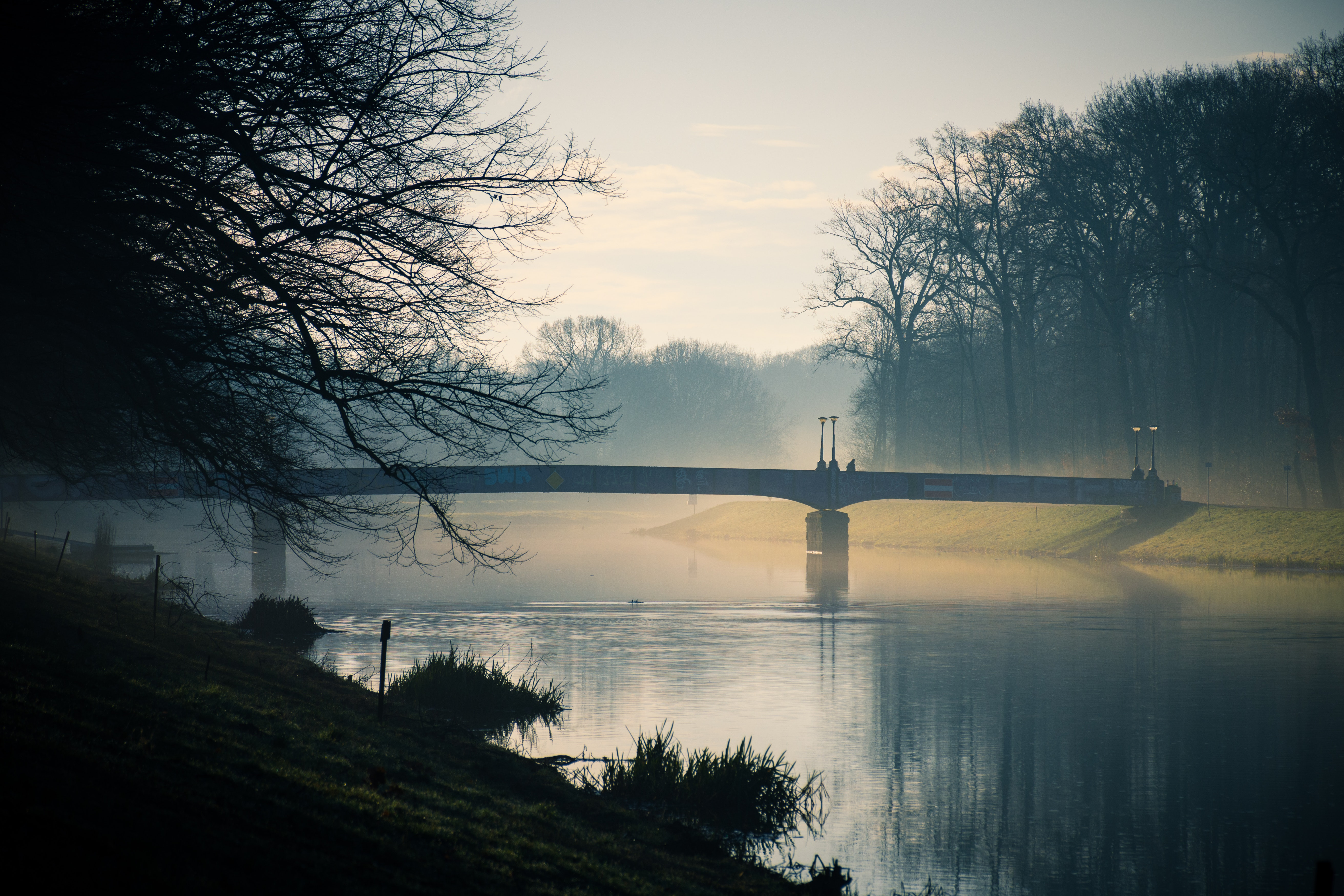 Gray Bridge Above River during Dusk, Bridge, Outdoors, Water, Trees, HQ Photo