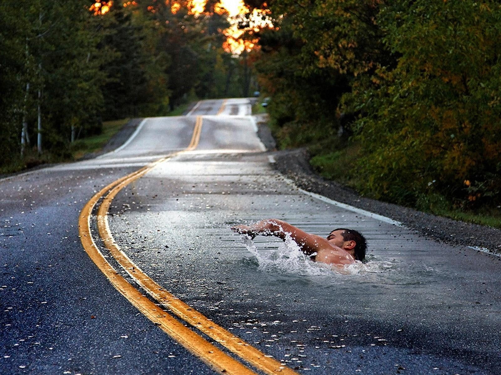 Gray concrete road field body of water with man swimming between ...