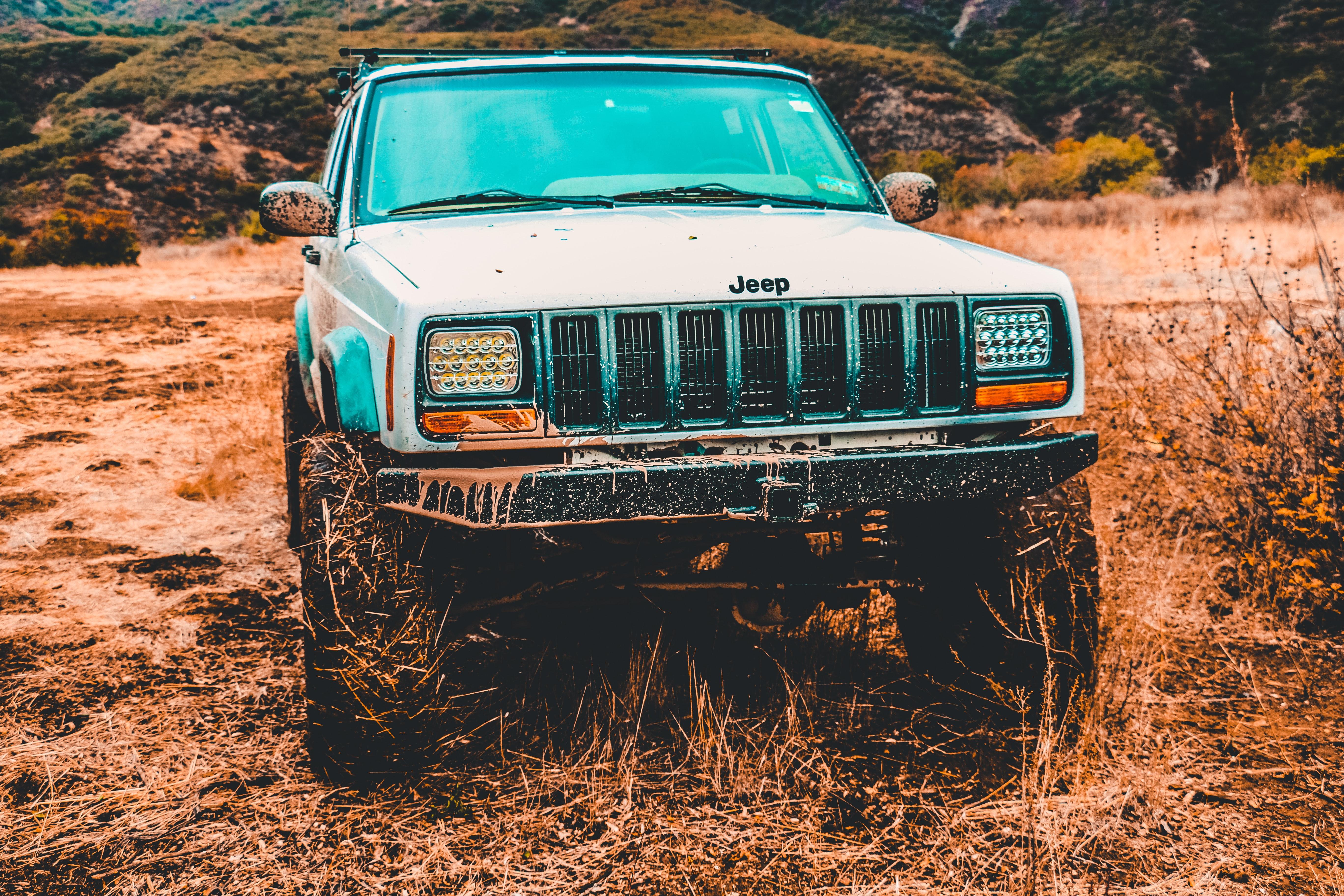 Gray Jeep Suv, Adventure, Landscape, Trees, Transportation system, HQ Photo