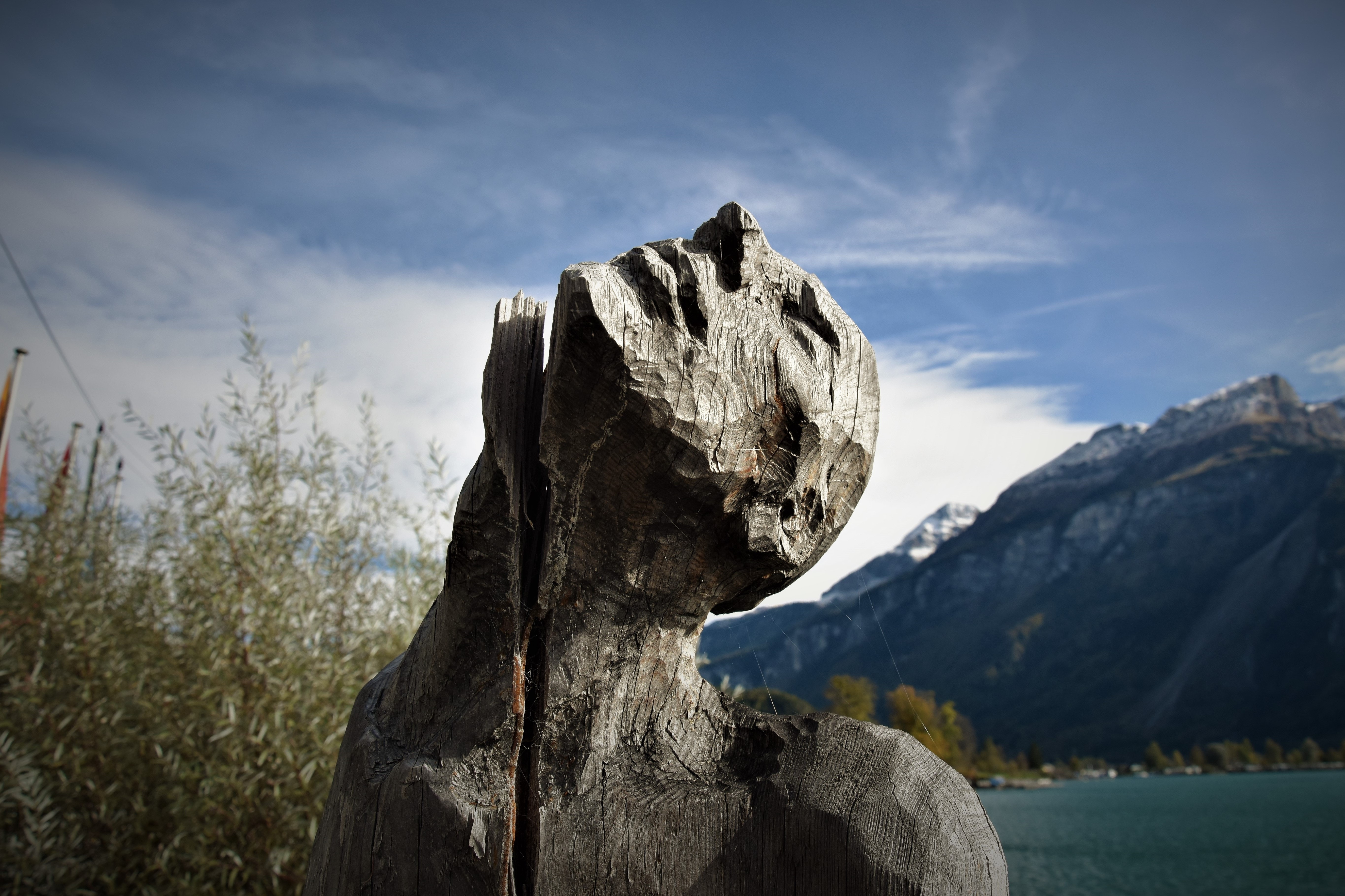 Gray Man Carved Stone Photography, Art, Profile, Water, Trees, HQ Photo