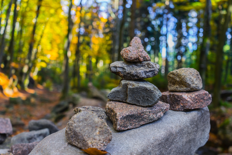 Gray pile of stones near trees photo