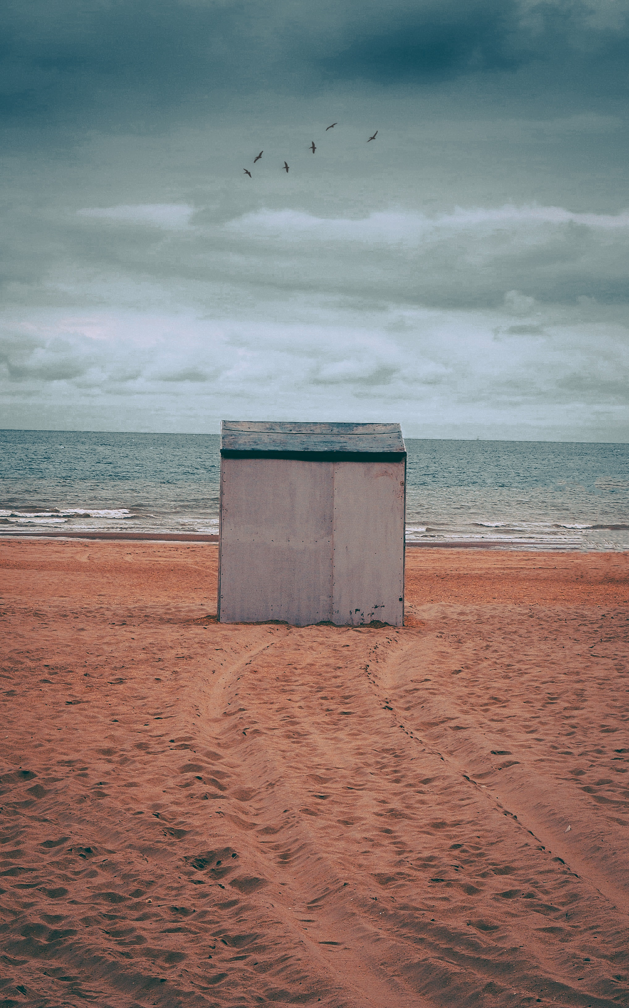 Gray storage shed on brown sand photo