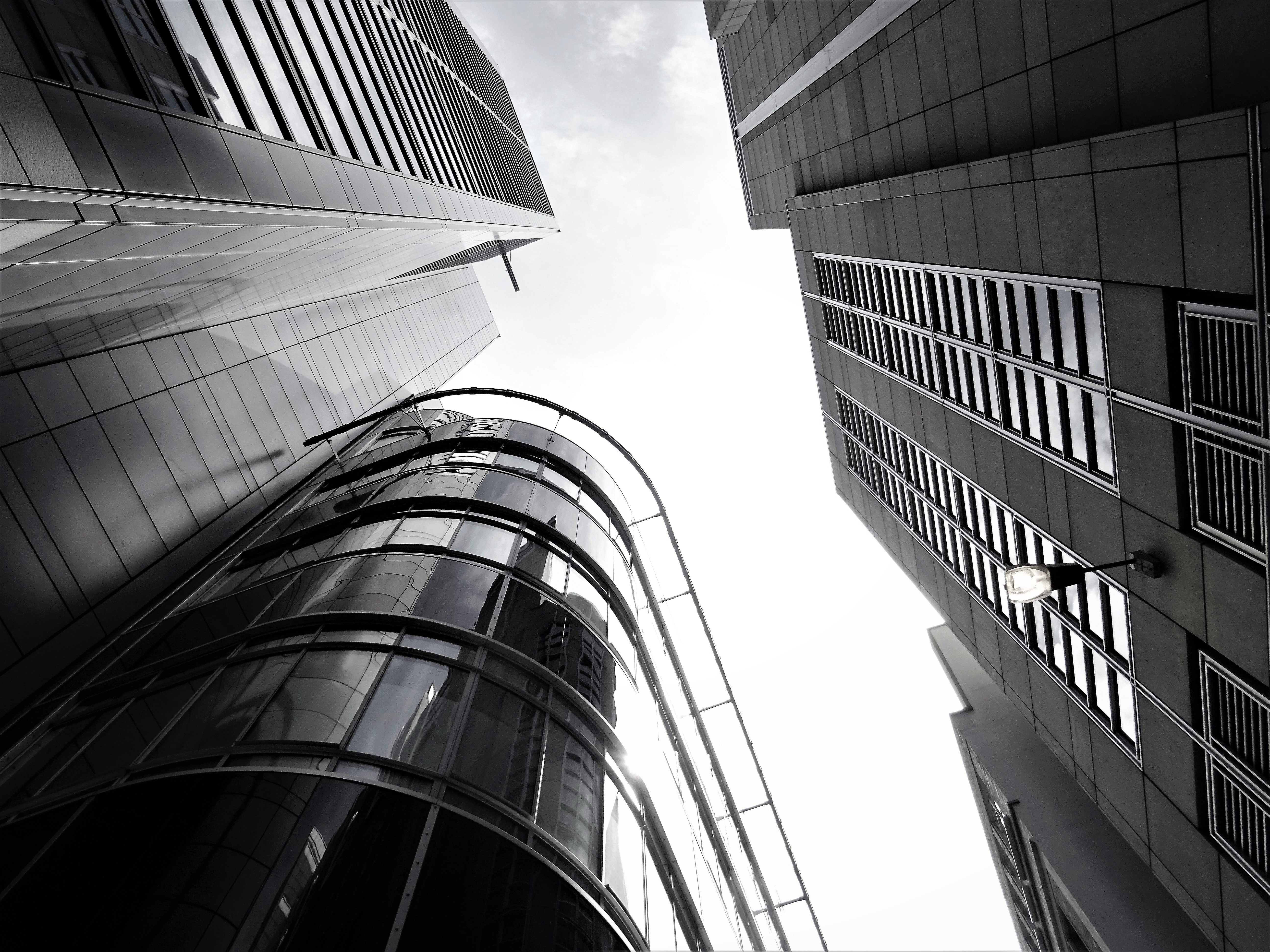 Grayscale Photograph of Buildings, Office, Windows, Urban, Tower, HQ Photo