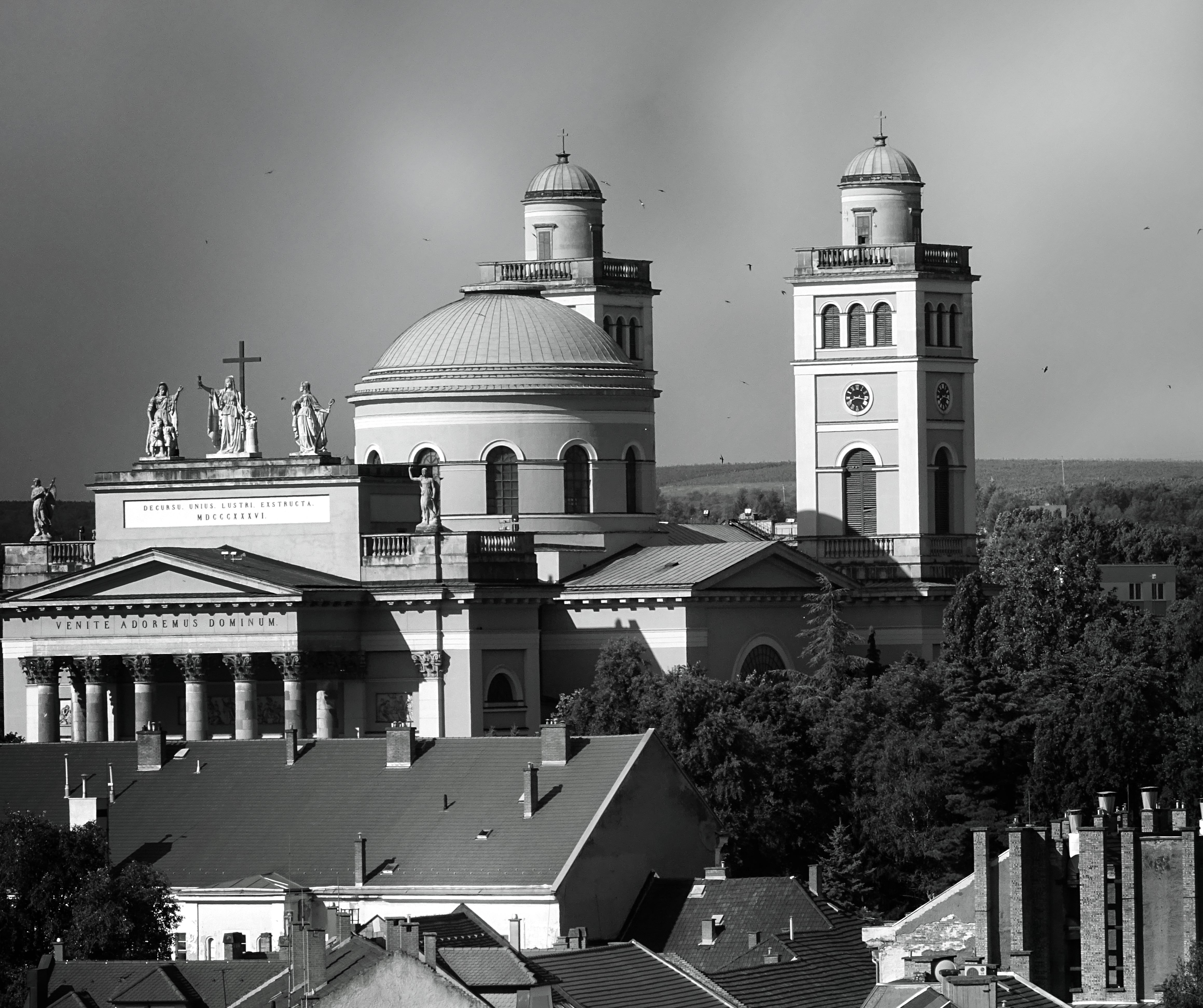 Grayscale photography of cathedral