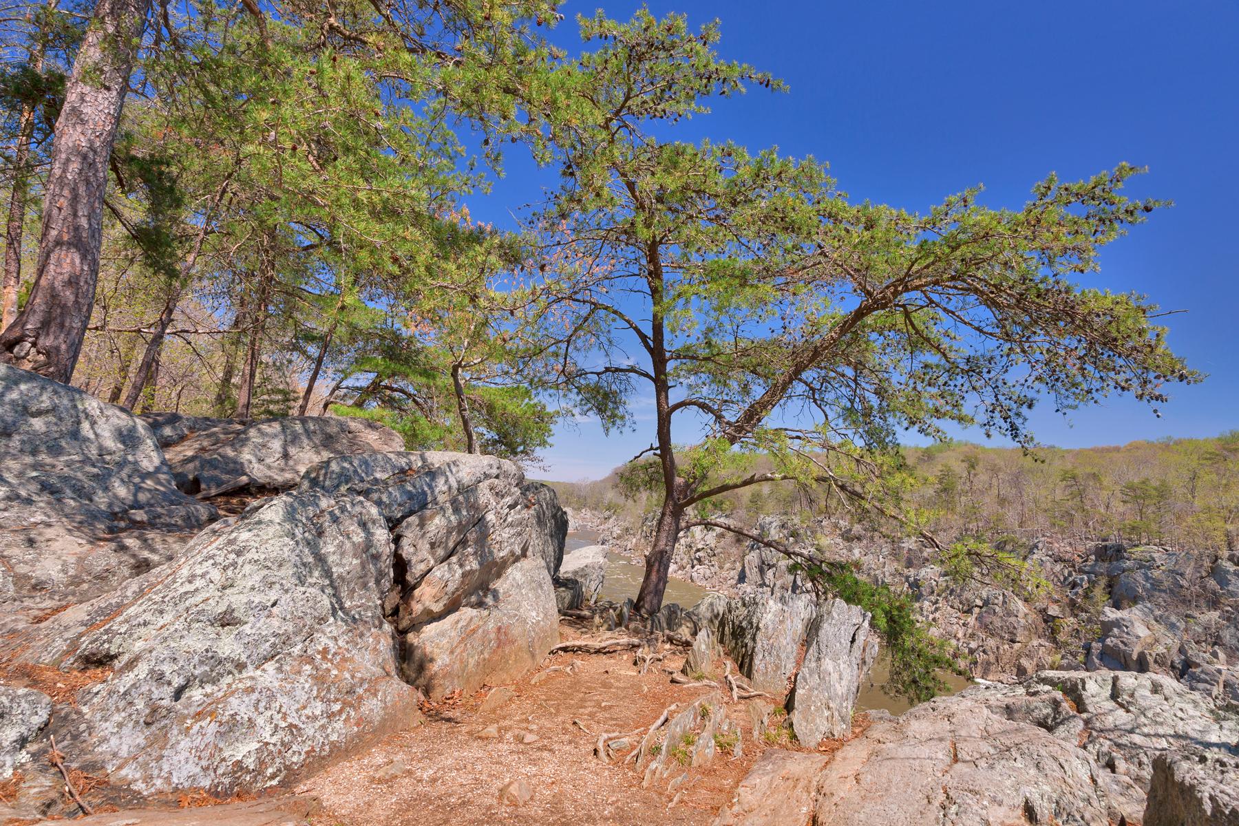 Great falls rocks & foliage photo