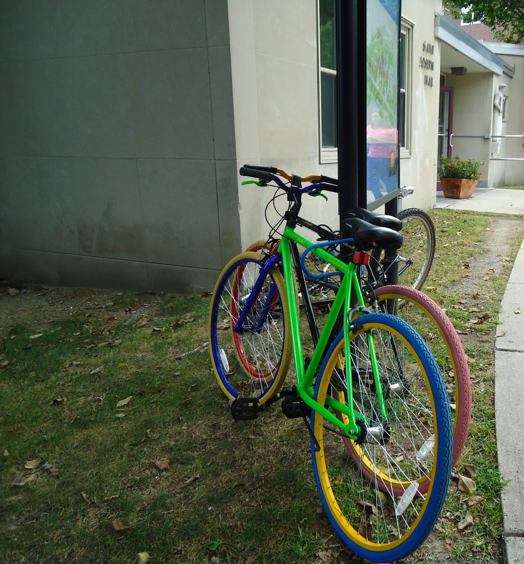 Green and pink bicycles photo