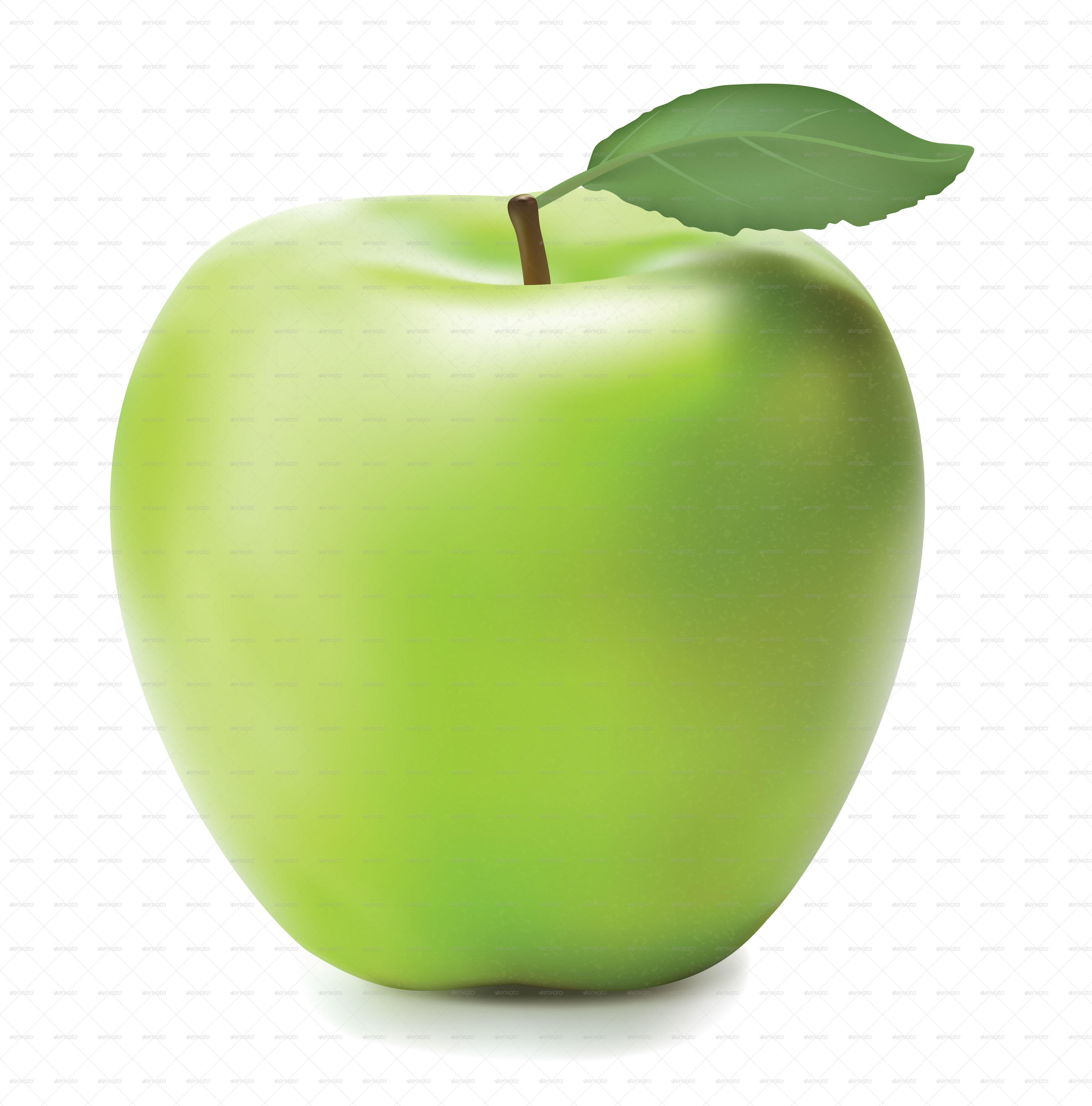 Green Apple by Buriy | GraphicRiver