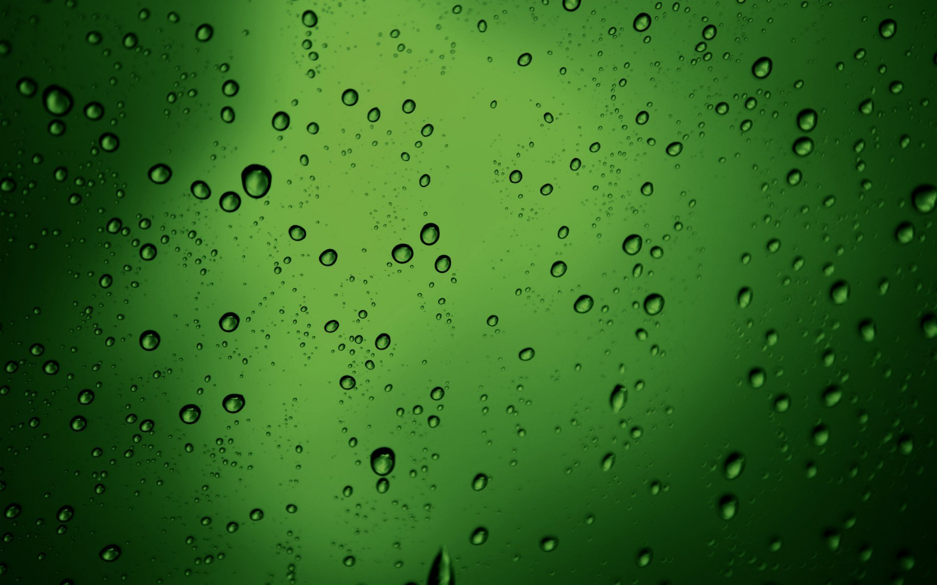 Green beer bubbles photo