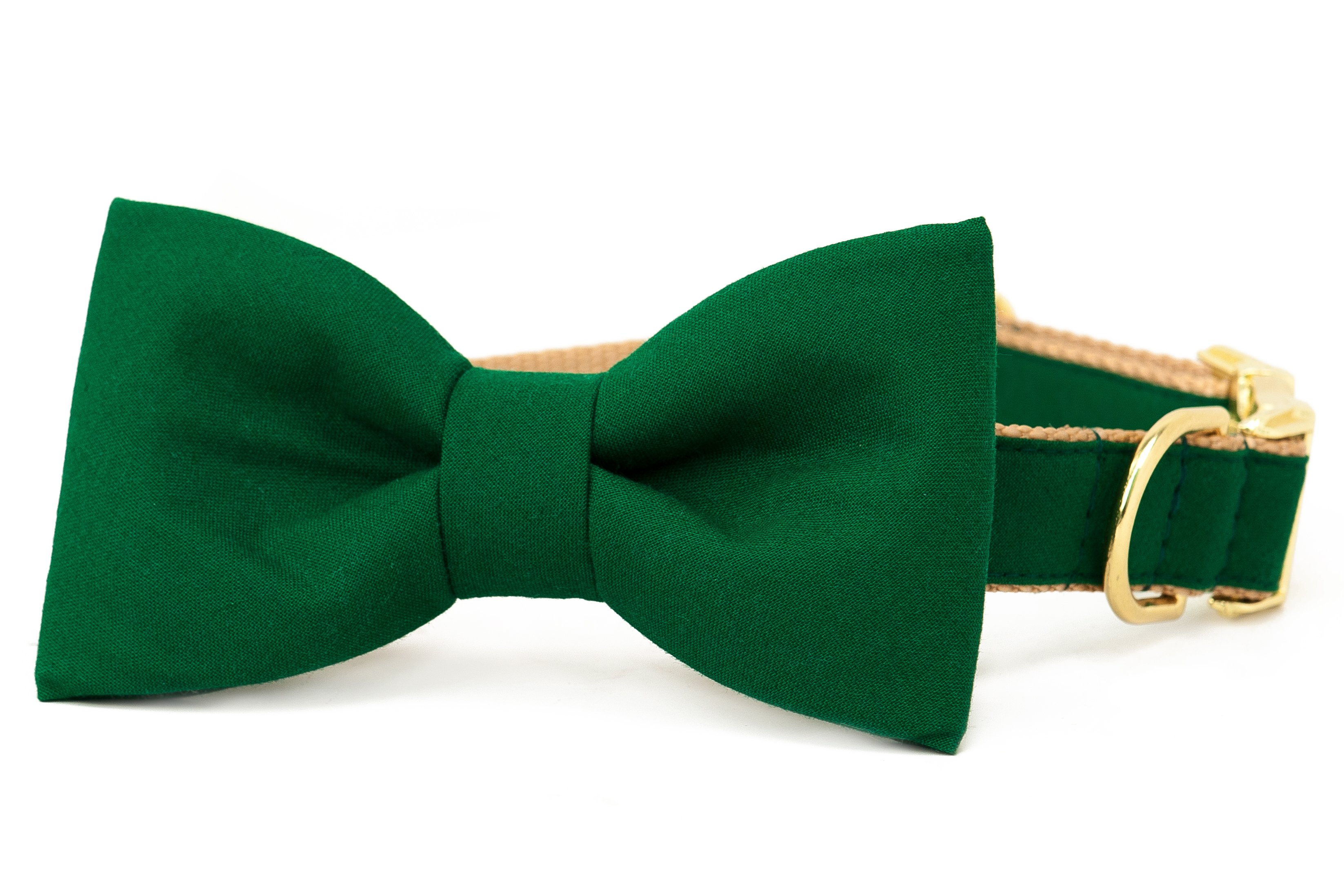 Crew LaLa™ Kelly Green Bow Tie Dog Collar