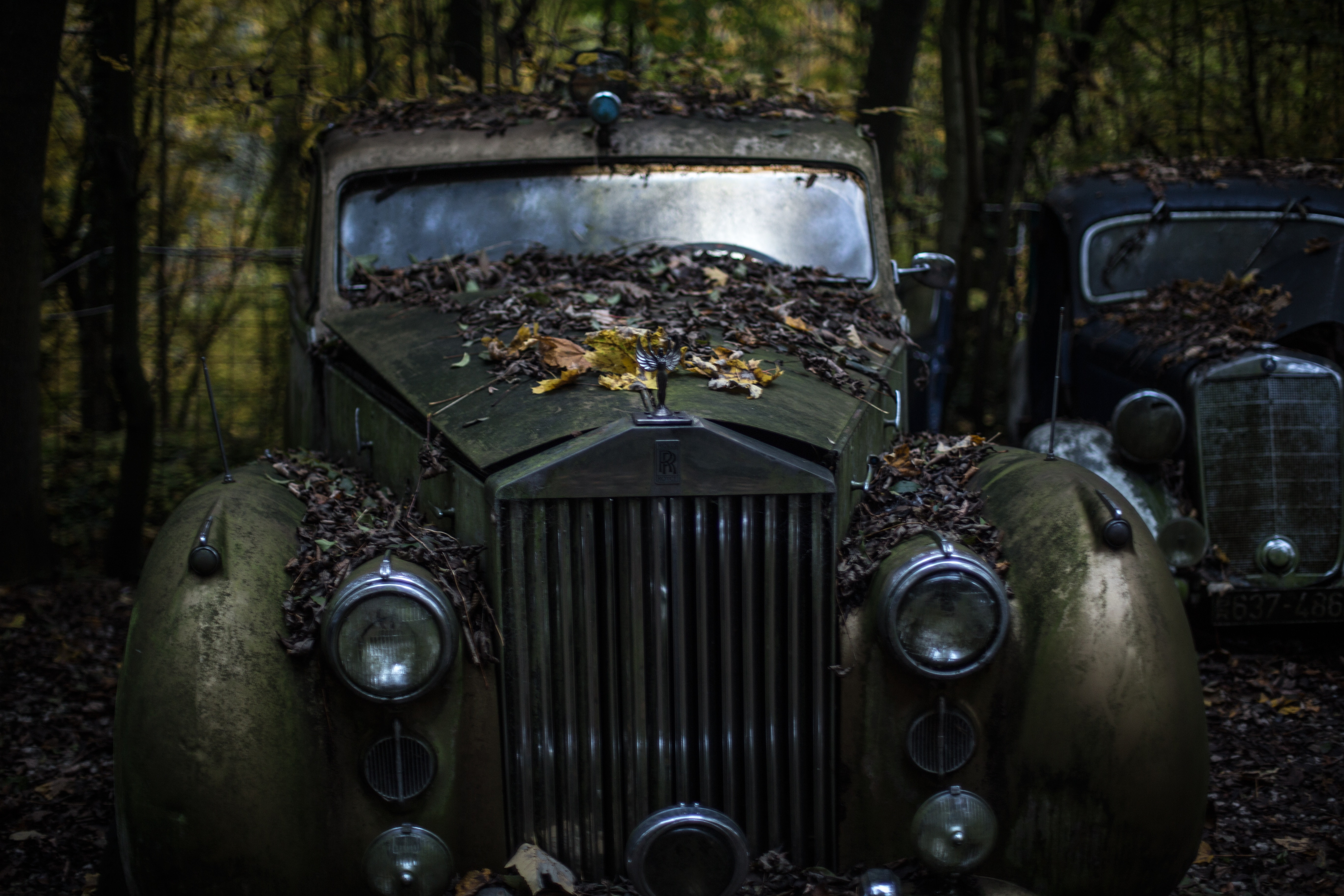 Green Classic Car in the Forest, Abandoned, Antique, Broken, Car, HQ Photo