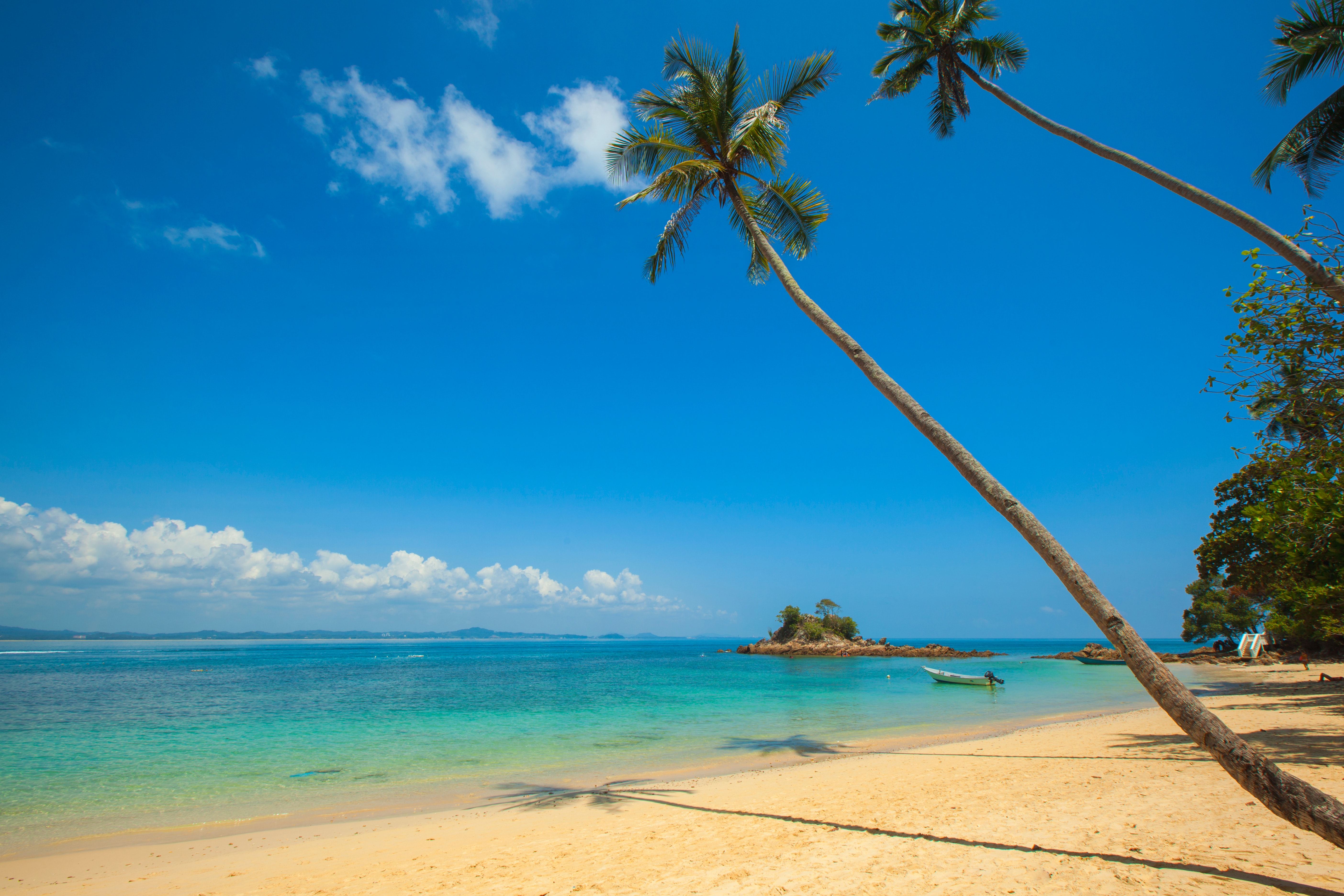 Green Coconut Palm Beside Seashore Under Blue Calm Sky during Daytime, Beach, Blue sky, Boat, Island, HQ Photo