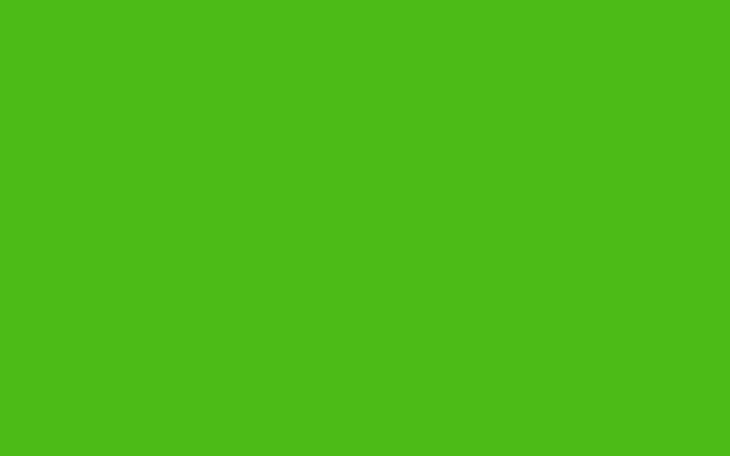 2560x1600 Kelly Green Solid Color Background