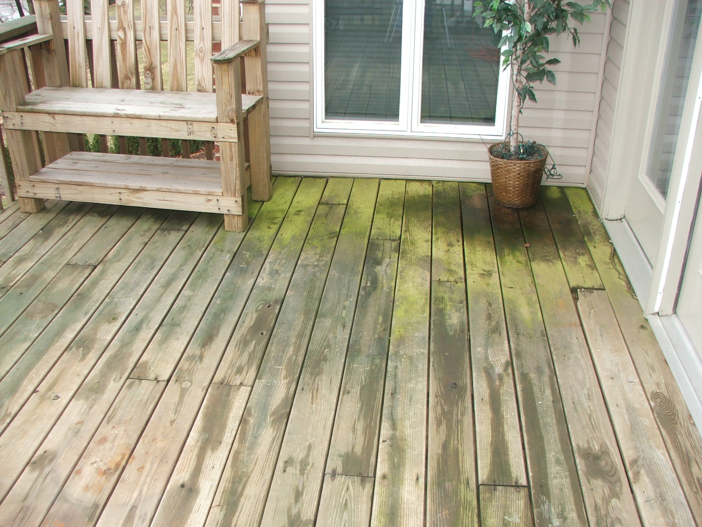 Green deck photo